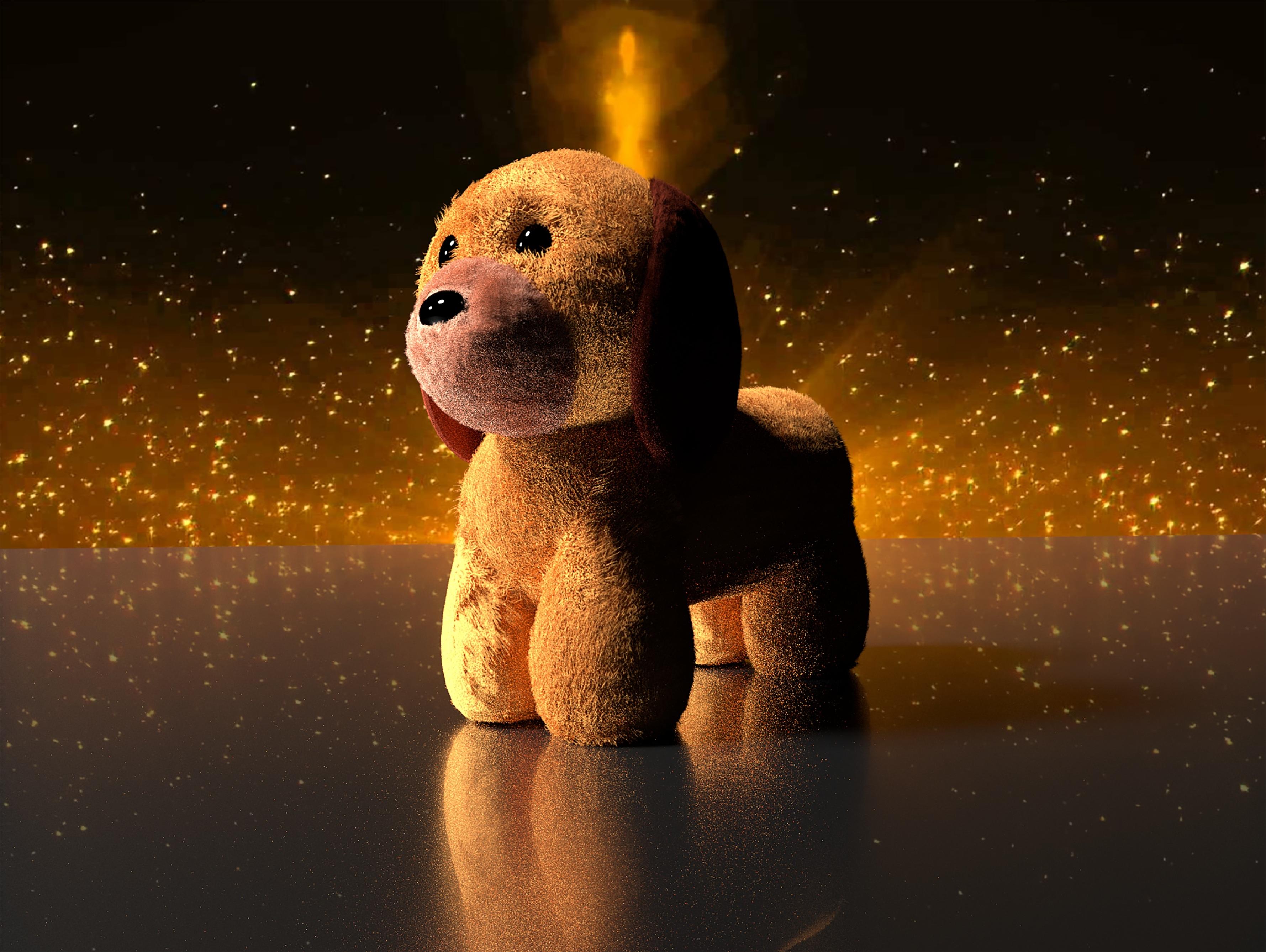 Gambar Malam Anak Anjing Hewan Ruang Coklat Kegelapan