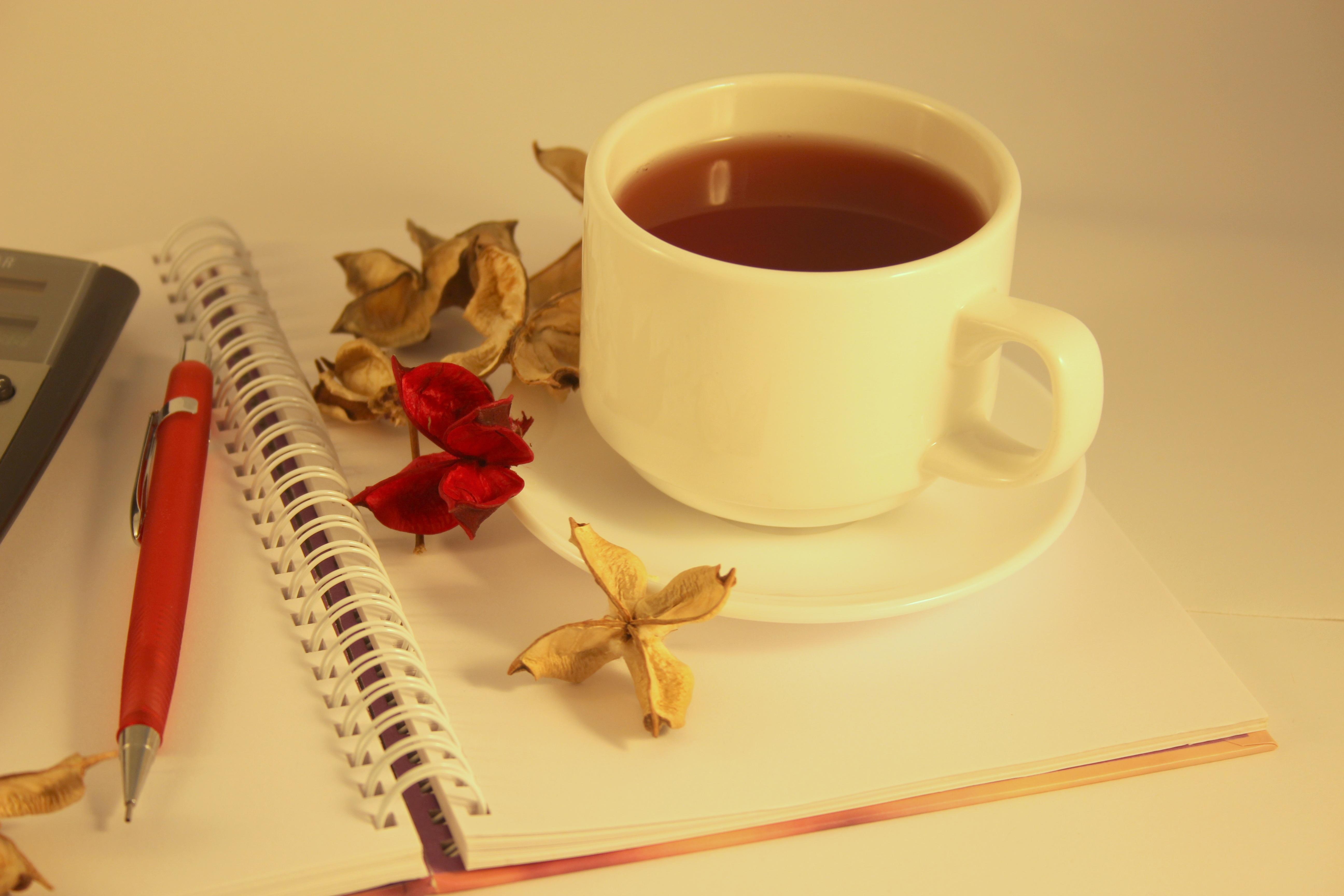 buku catatan teh pagi pena cangkir bersantai kantor minuman minum gaya hidup sarapan kertas cangkir kopi
