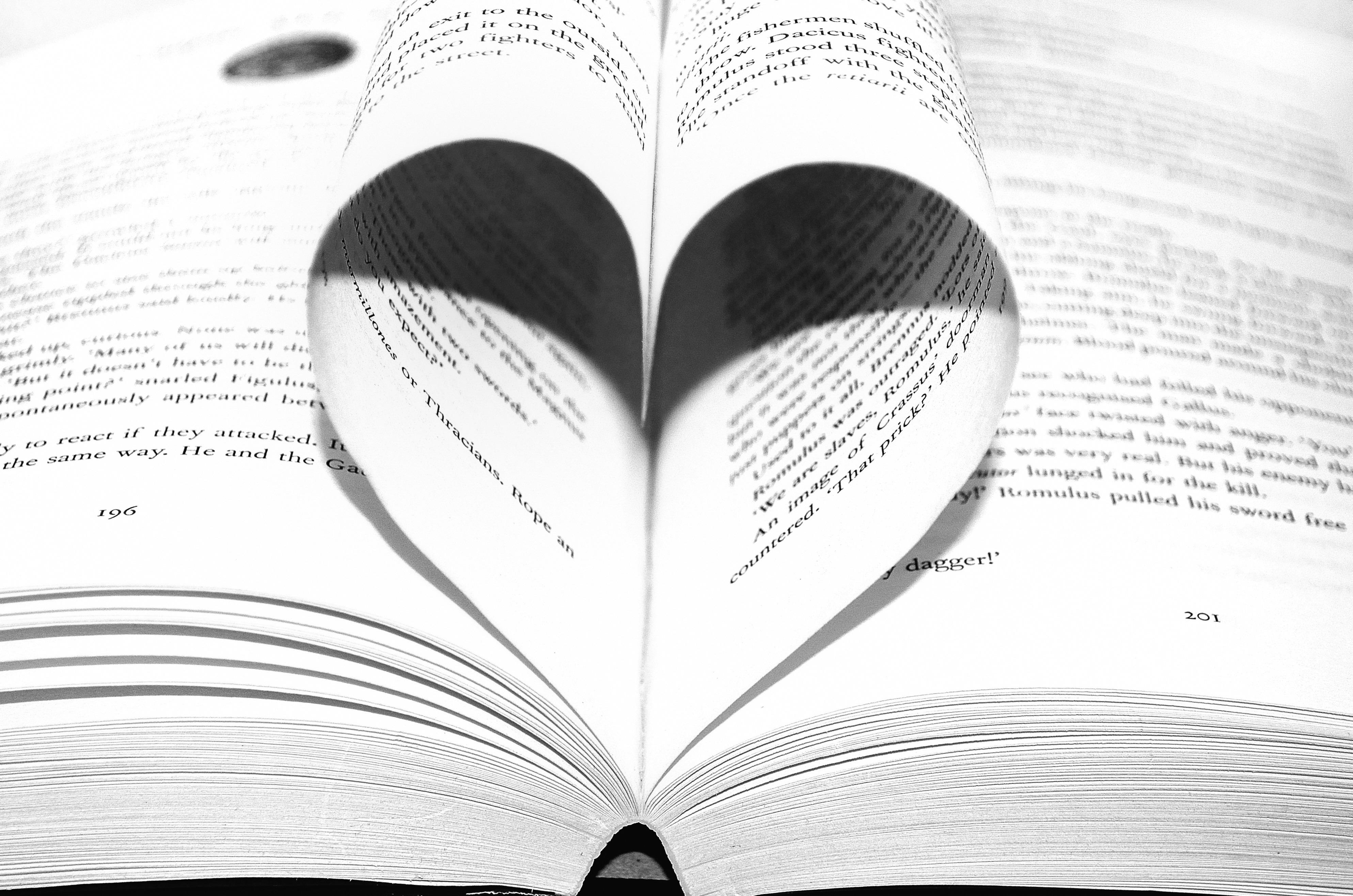 Fotos Gratis Novela Ala En Blanco Y Negro Amor Corazón Patrón