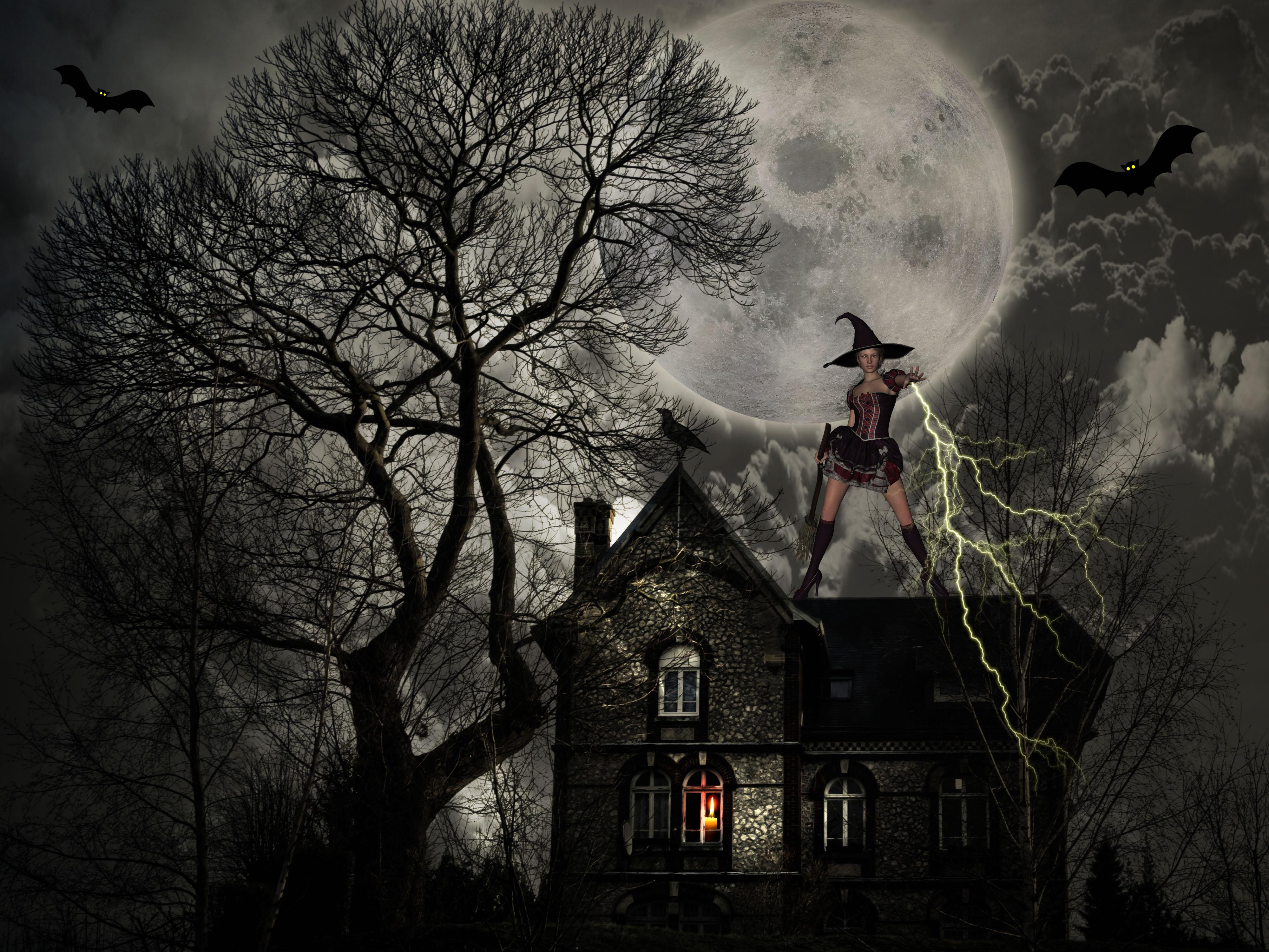 Gambar Tua Fantasi Bulan Takut Kengerian Pohon