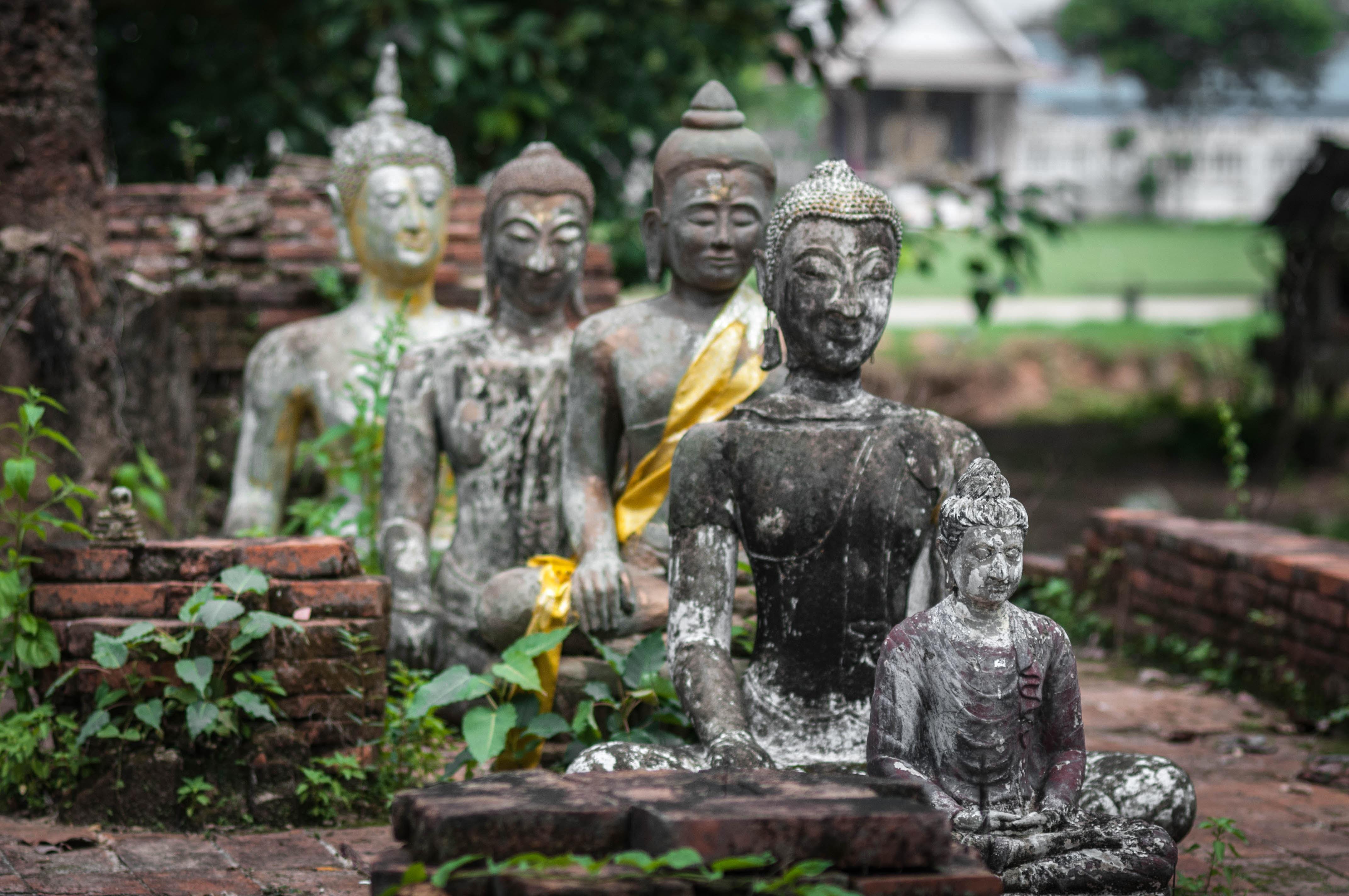 Fotos gratis antiguo monumento estatua budismo religi n asia jard n tailandia orar - Buda jardin ...