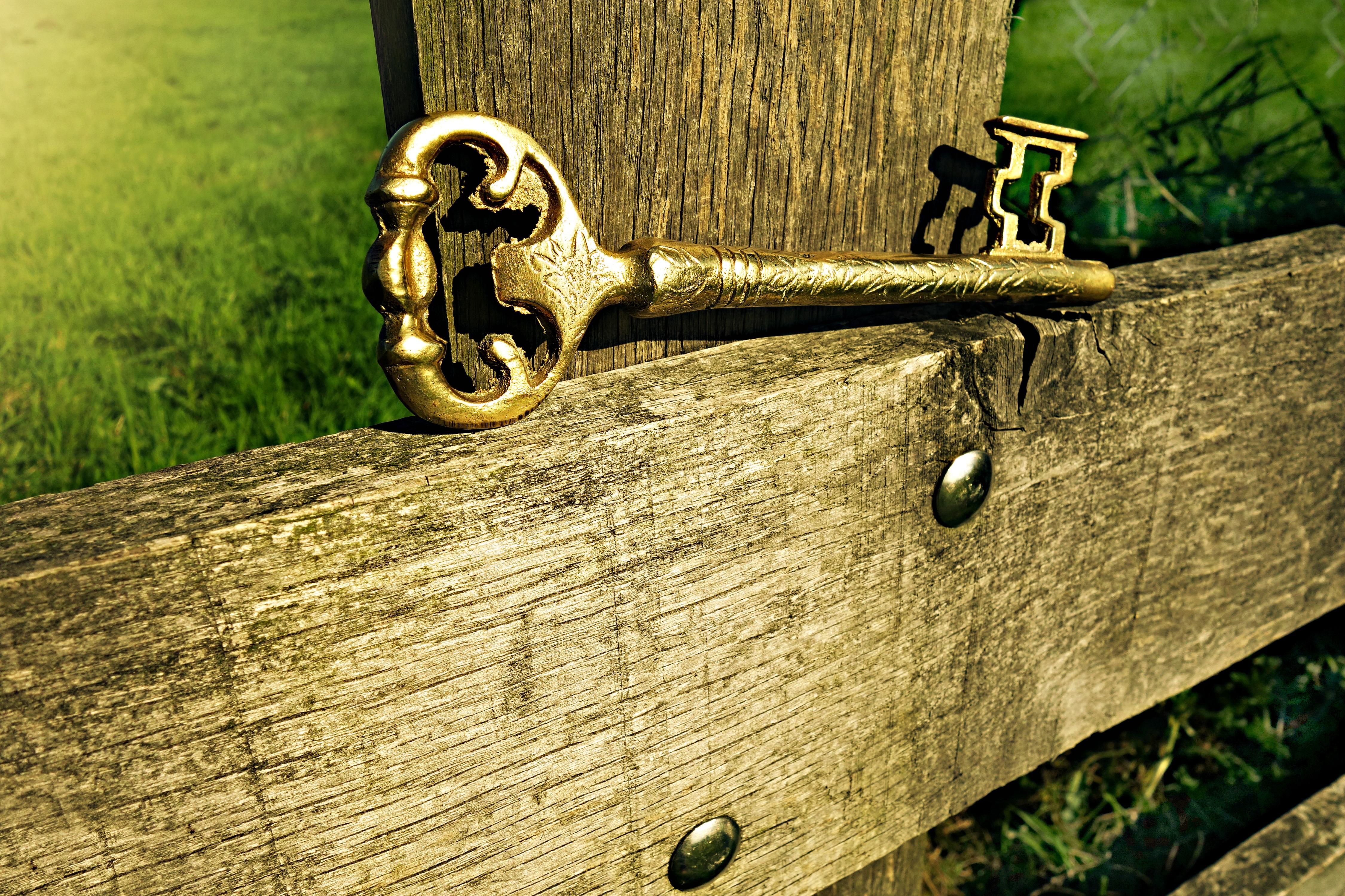 Free Images : open, wood, vintage, antique, green, entrance, metal ...