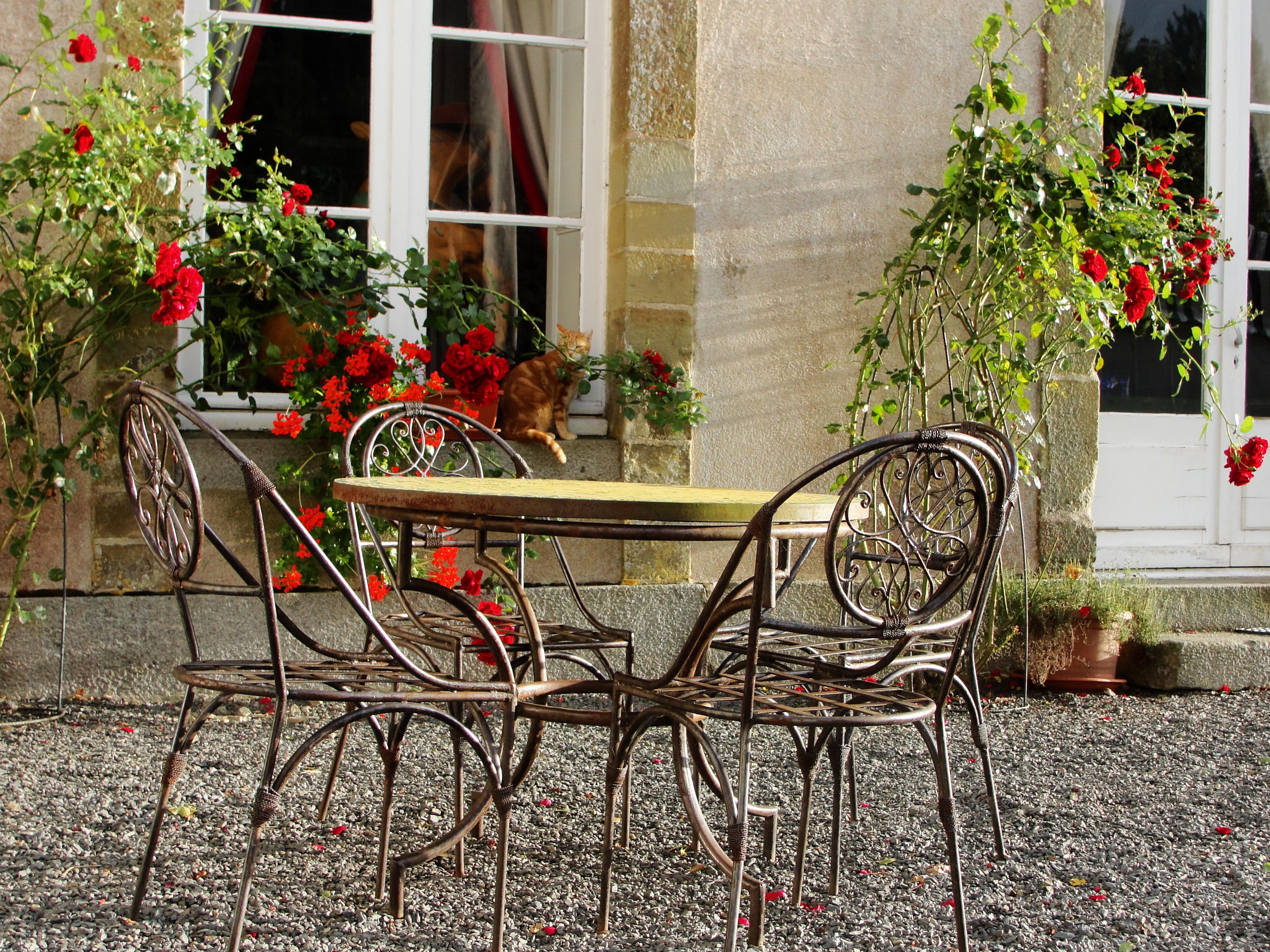 Fotos gratis : al aire libre, arquitectura, flor, edificio, castillo ...