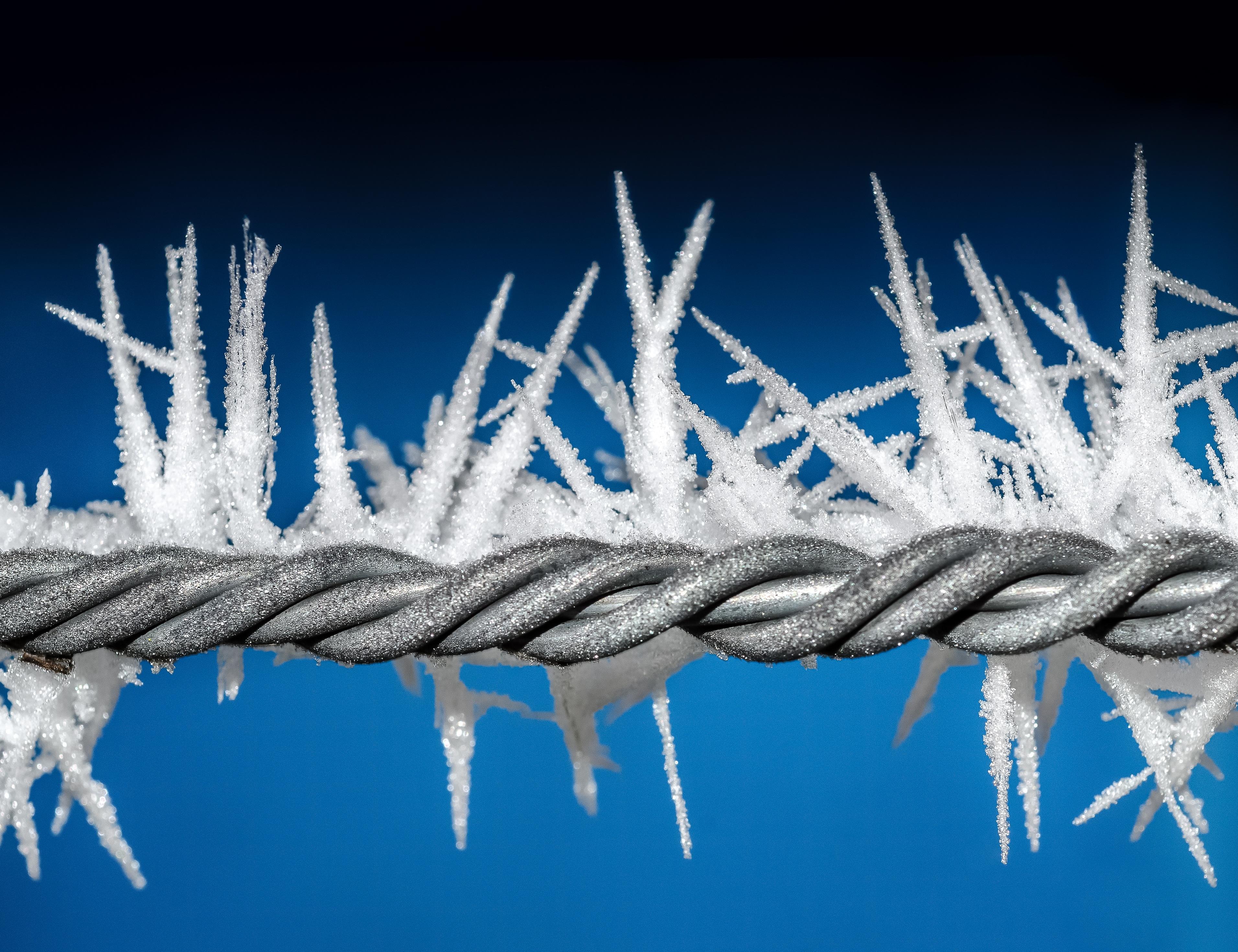 Kostenlose foto : draussen, Ast, Schnee, kalt, Winter, Zaun, Weiß ...