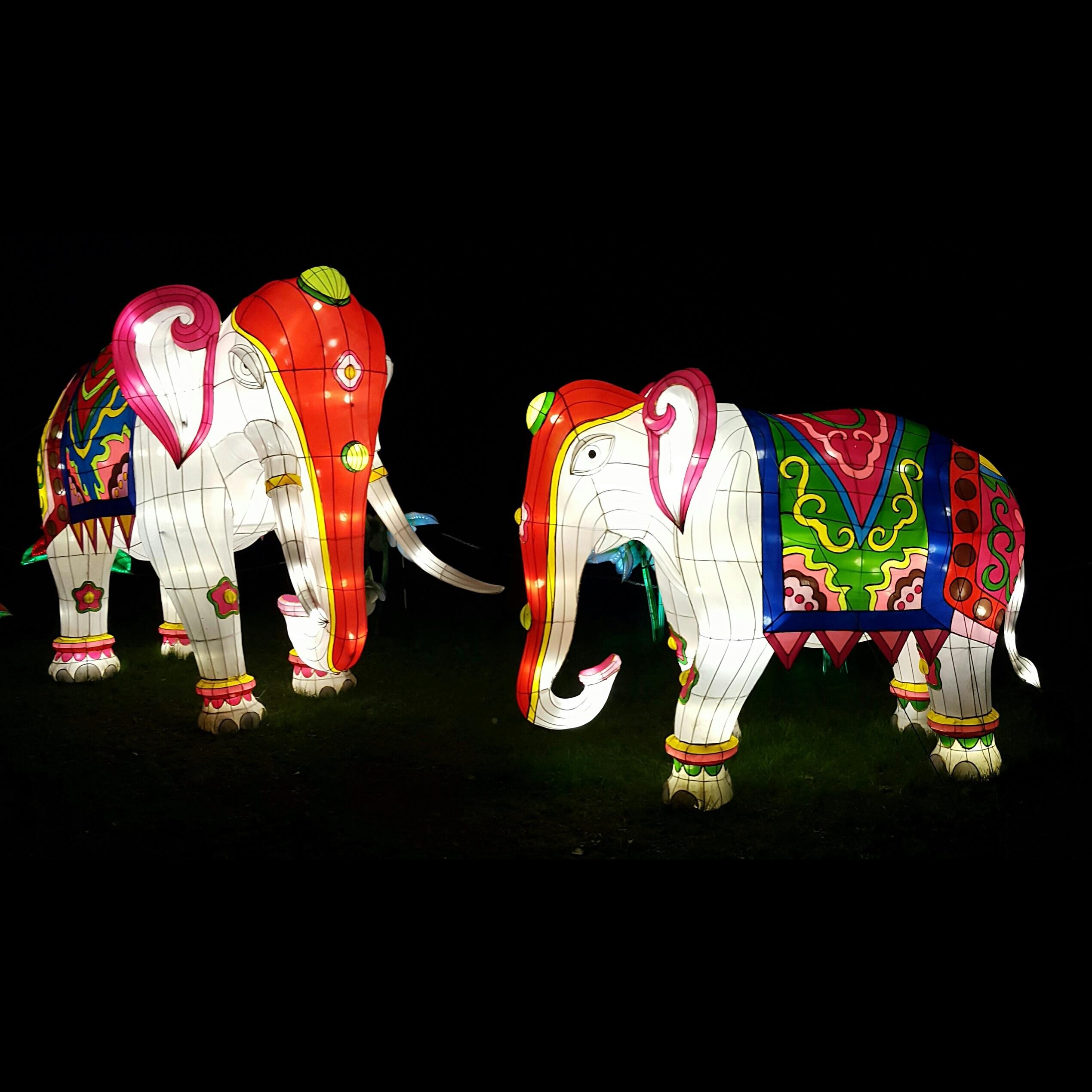 Gambar Outdoor Cahaya Dekorasi Artistik Mainan Seni