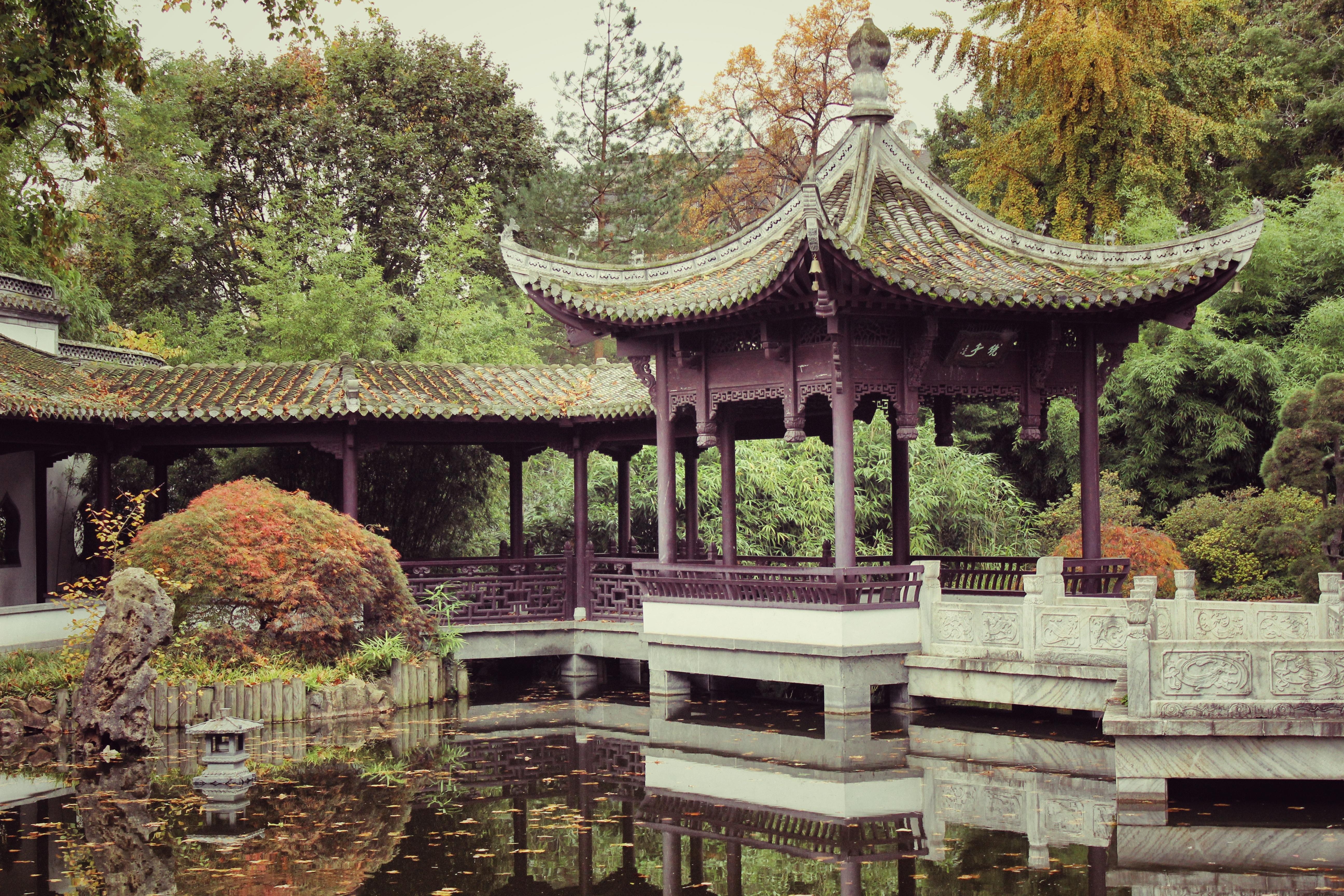 Palace Pond Asian Environment Chinese Peaceful Park Calm Garden Place Of Worship Temple Pavilion Shrine Botanical