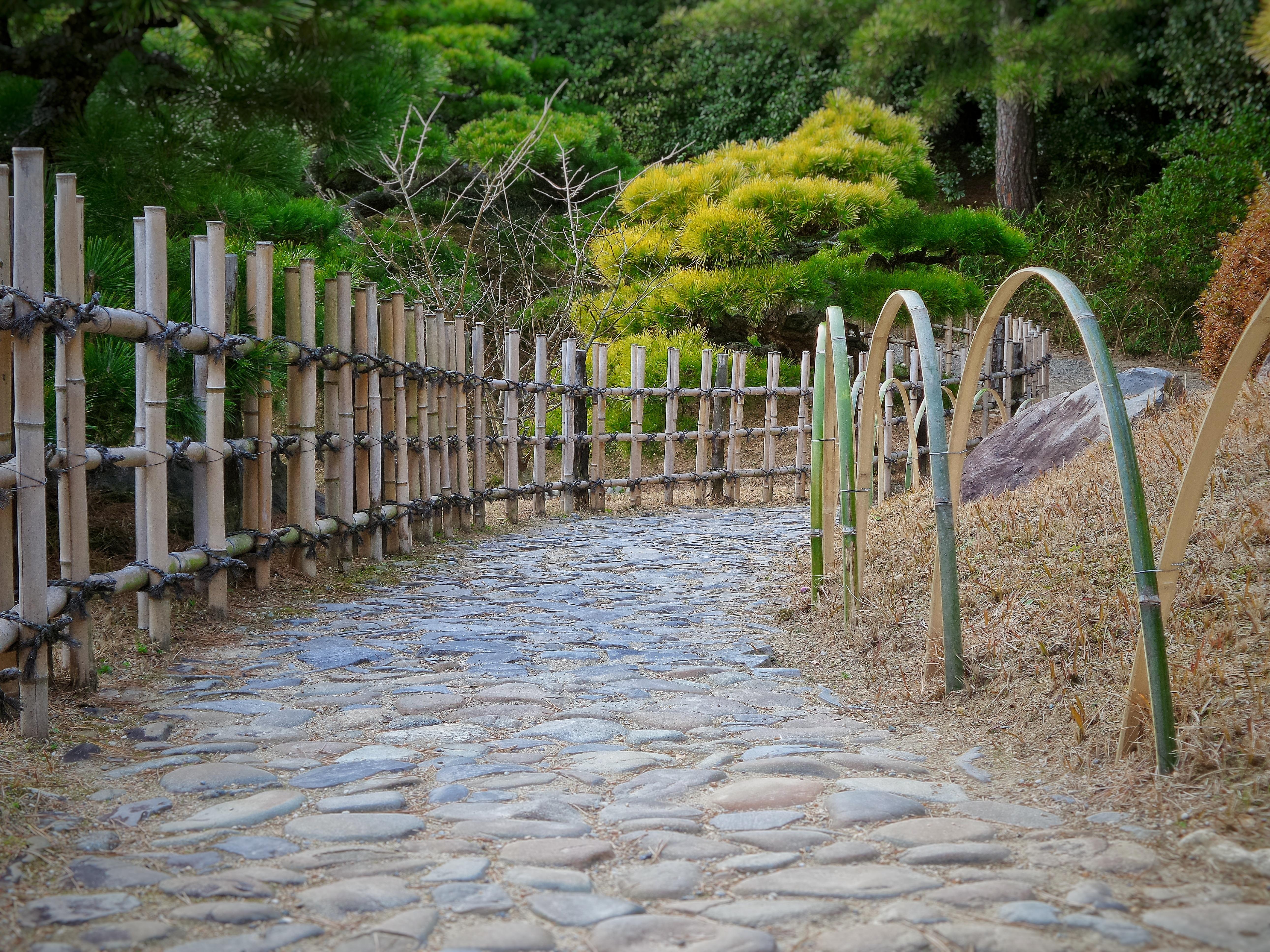 Kostenlose foto Pfad Zaun Mauer Fluss Gehweg Grün Garten