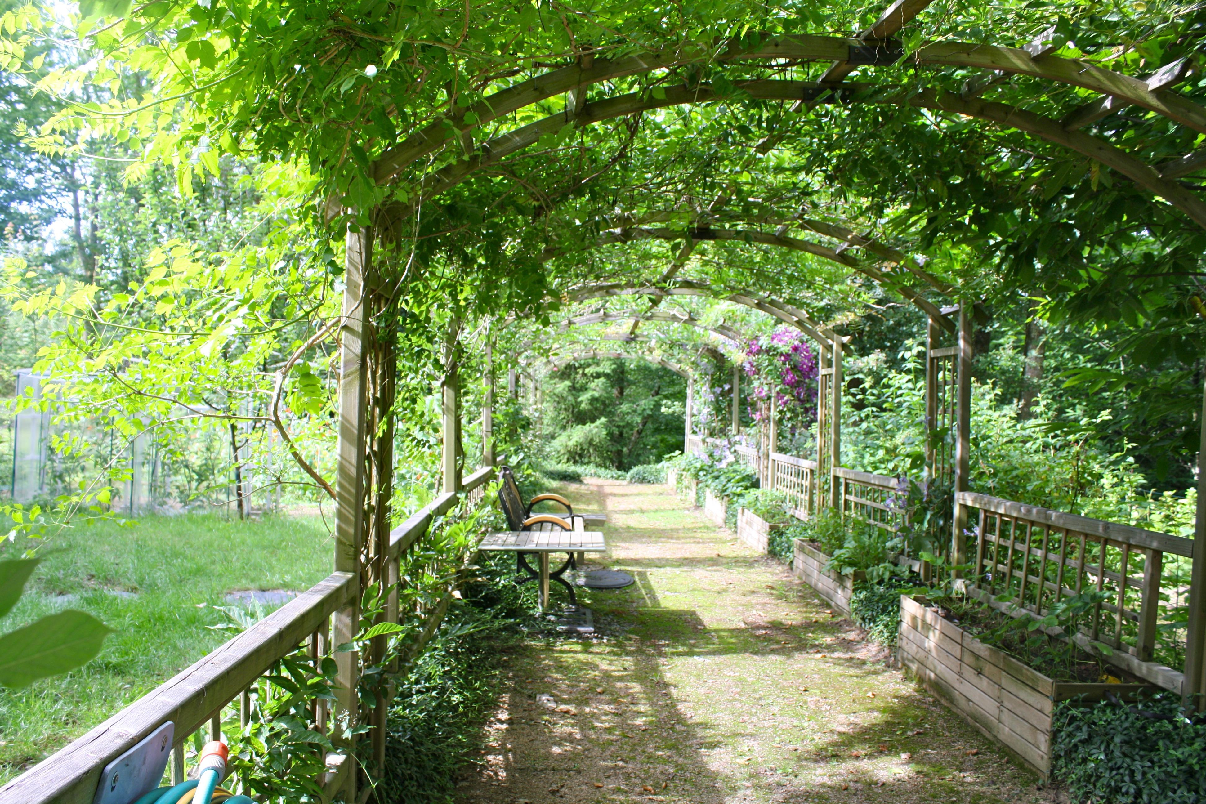 free images path flower jungle backyard botany leafy botanical garden estate arbor. Black Bedroom Furniture Sets. Home Design Ideas