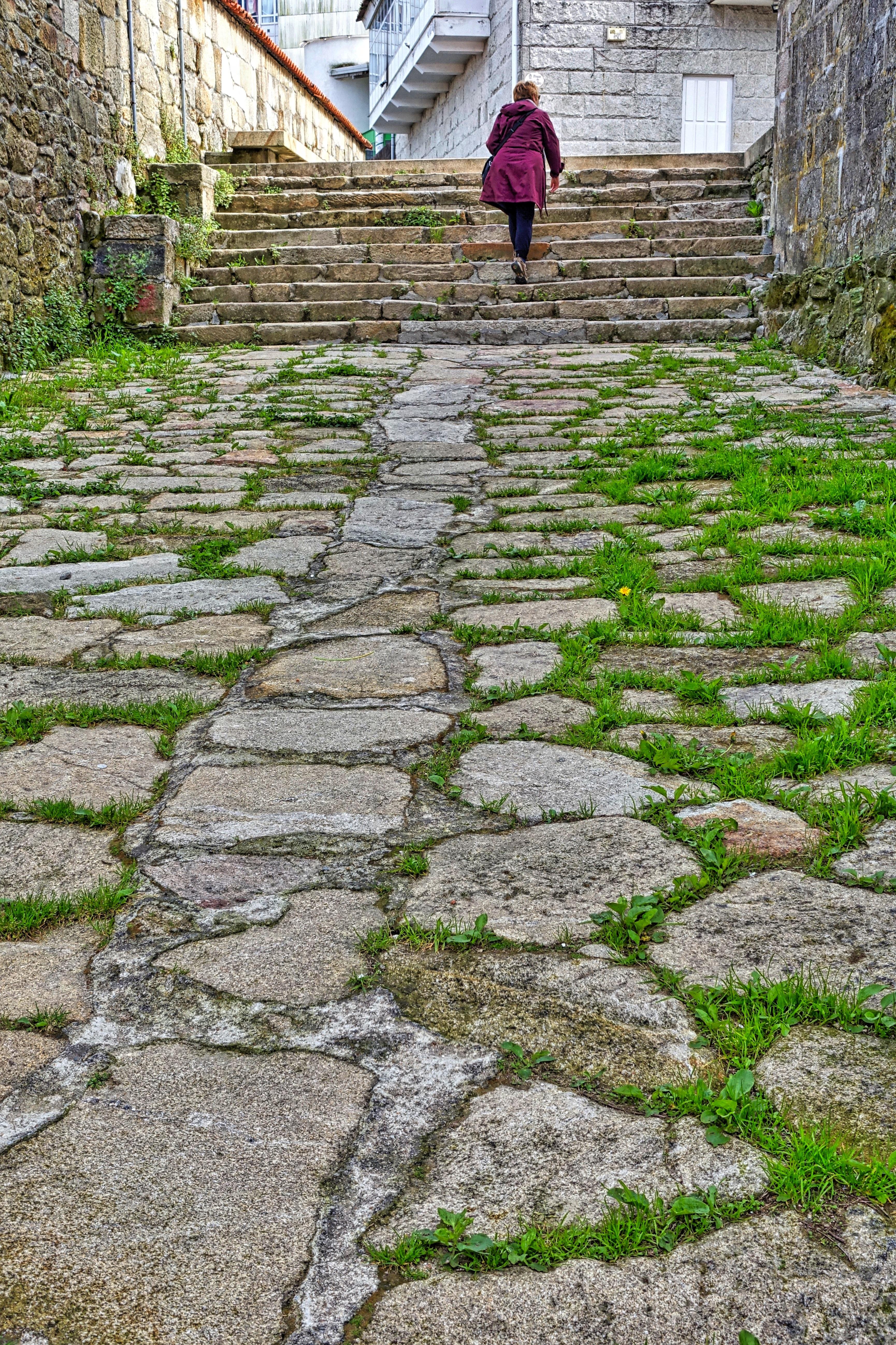 Path Pathway Grass Rock Street Lawn Sidewalk Cobblestone Wall Walkway Soil  Stone Wall Garden Brick Grassy