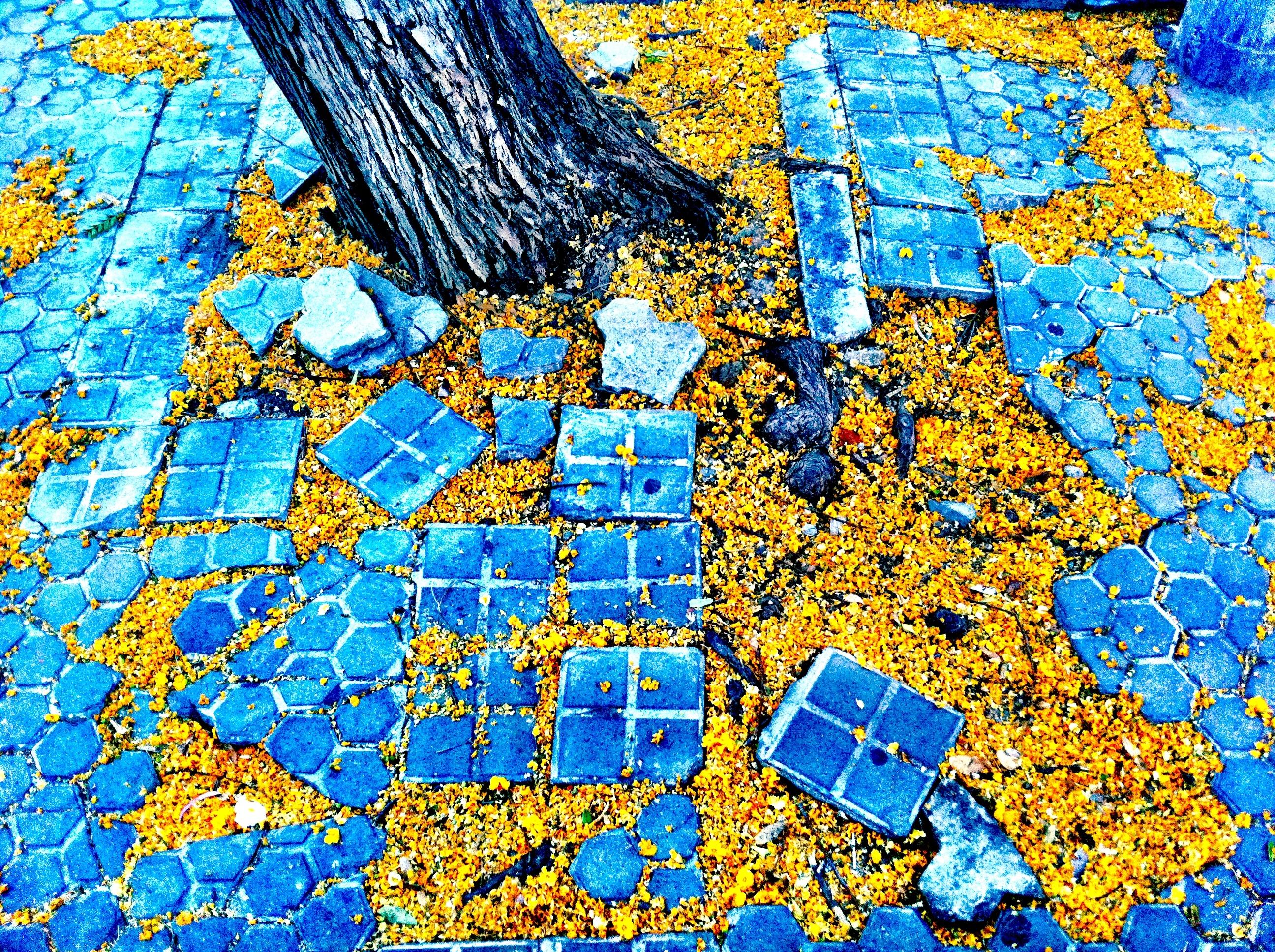 Kostenlose Foto Muster Karte Welt Kunst Mosaik 2592x1936