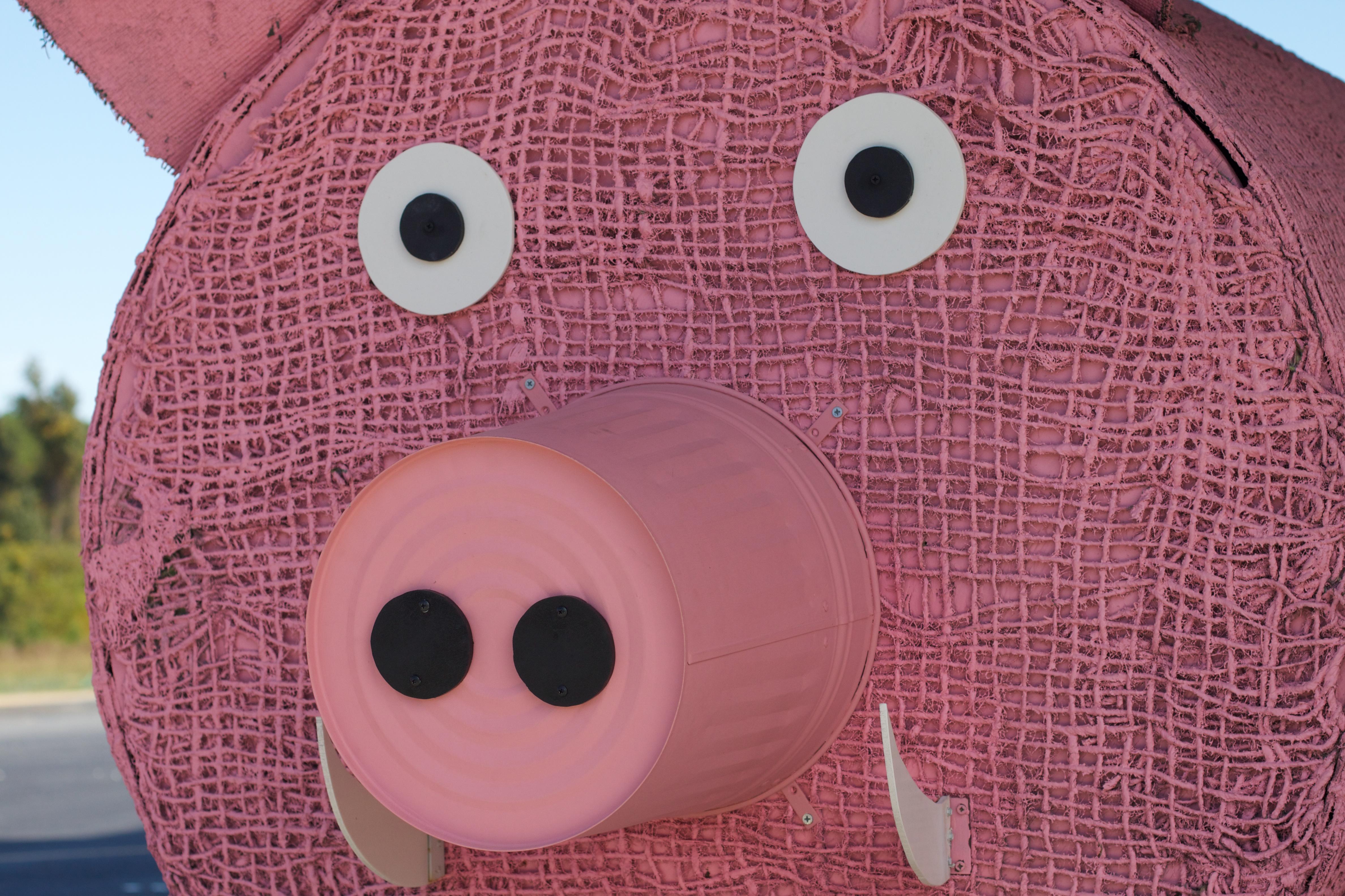 Kostenlose foto : Muster, Rosa, Spielzeug, Kreis, Textil-, Kunst ...
