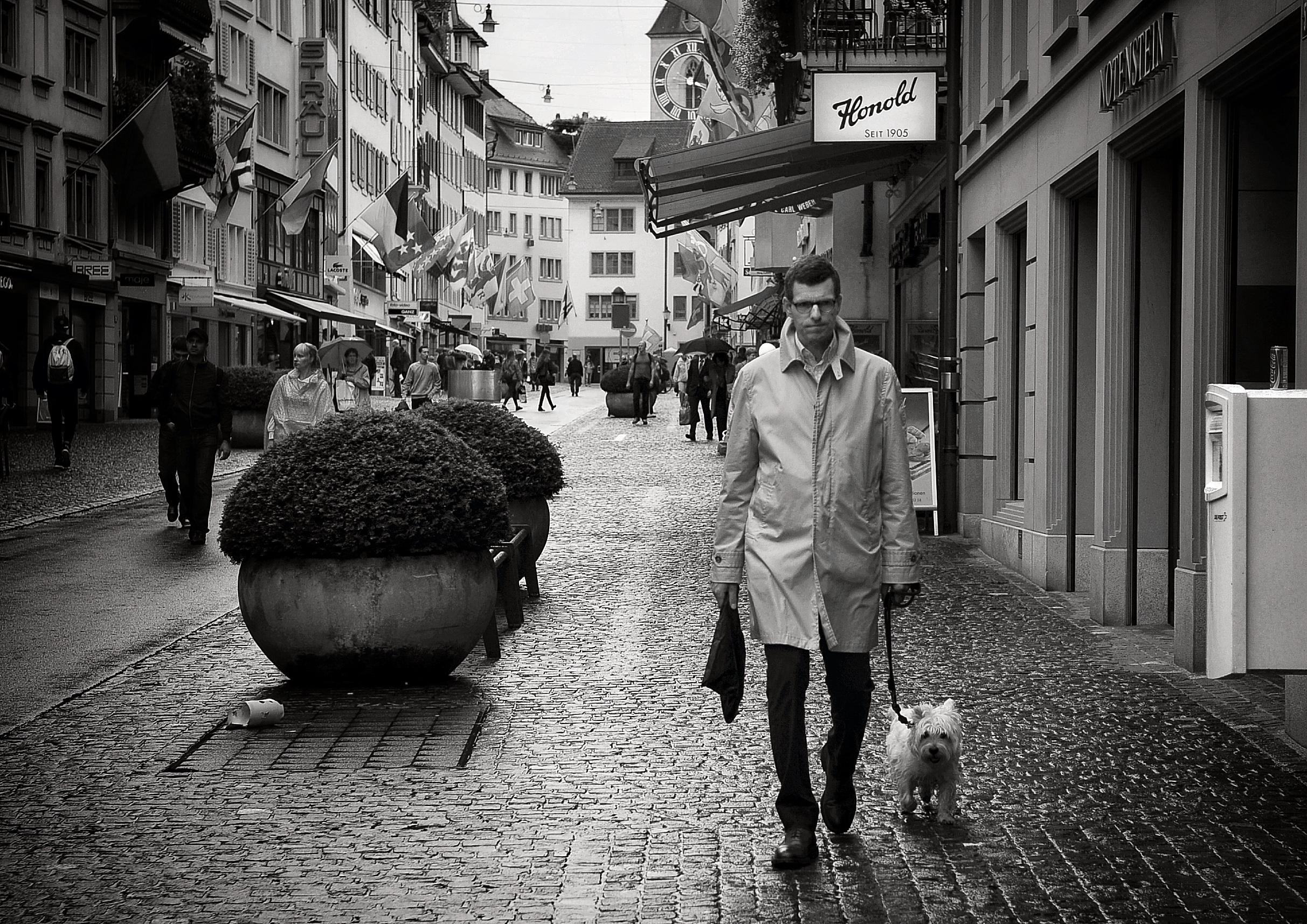 ec2cc80073fb4 Fotos gratis   peatonal, en blanco y negro, gente, la carretera, callejón,  ciudad, perro, urbano, color, monocromo, fotografía callejera, Bw, sincero,  ...