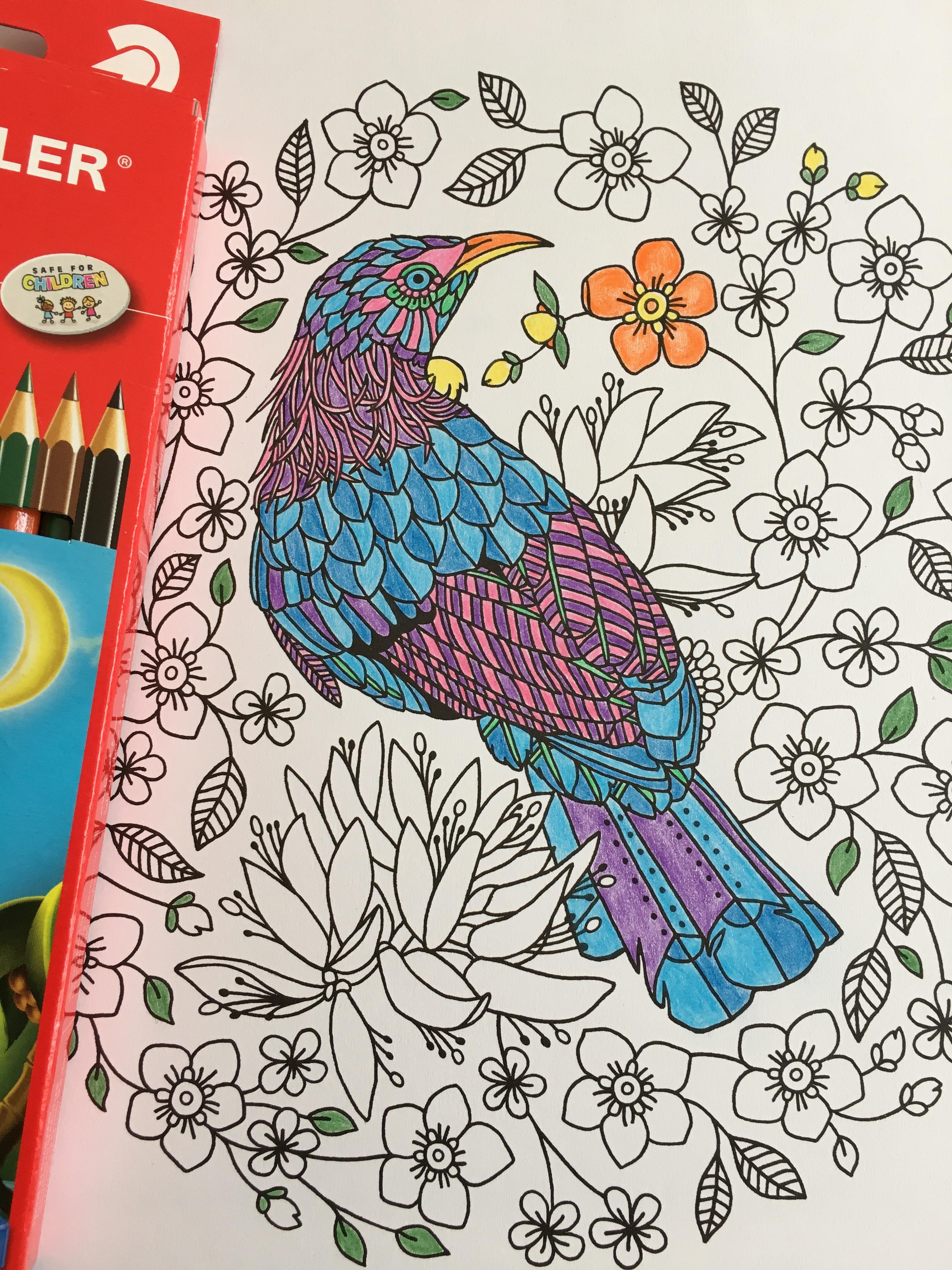 Gambar Pensil Kreatif Burung Ungu Pola Bersantai Warna