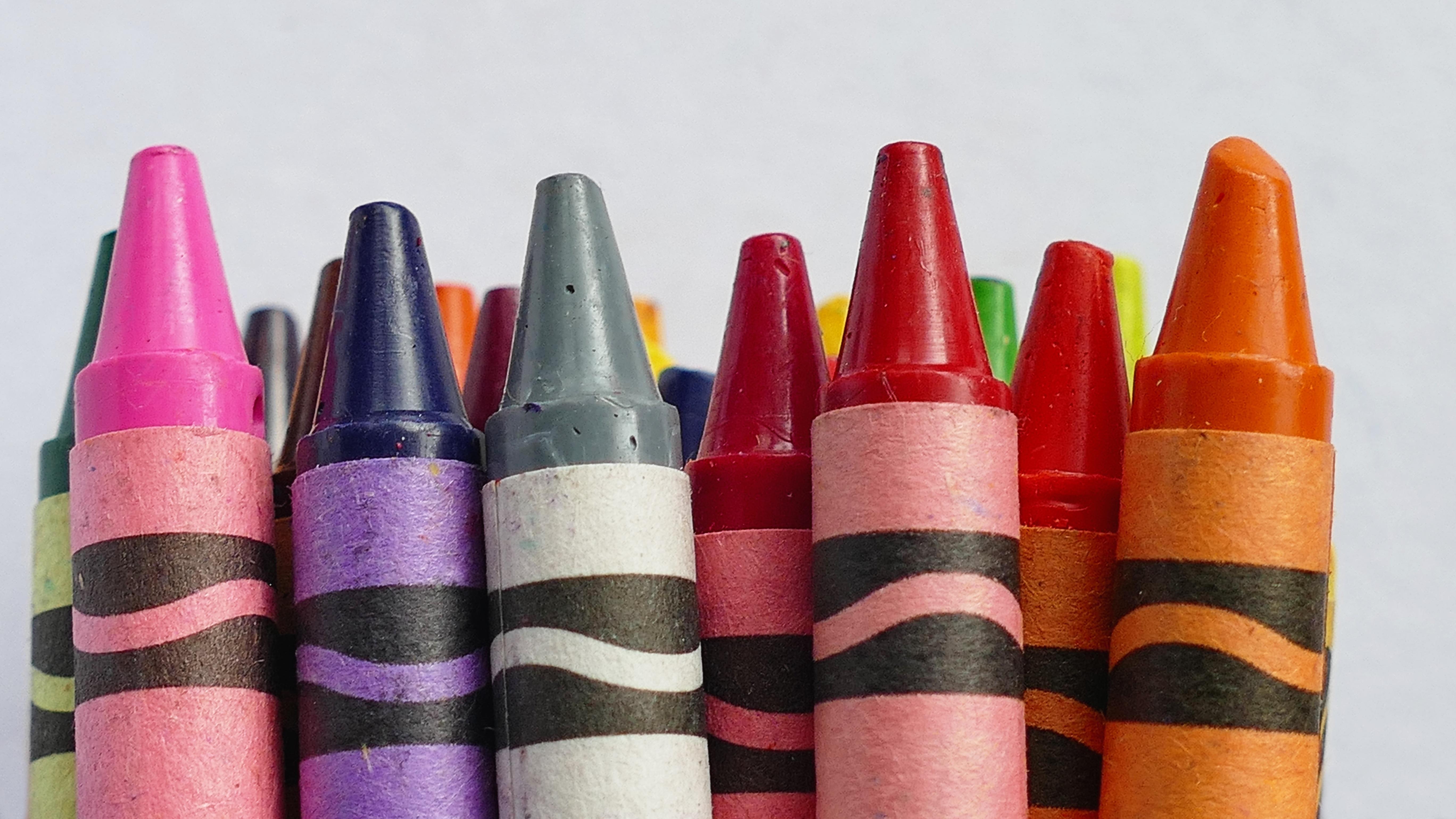 Gambar Pensil Kelompok Ungu Anak Jeruk Hijau Makro