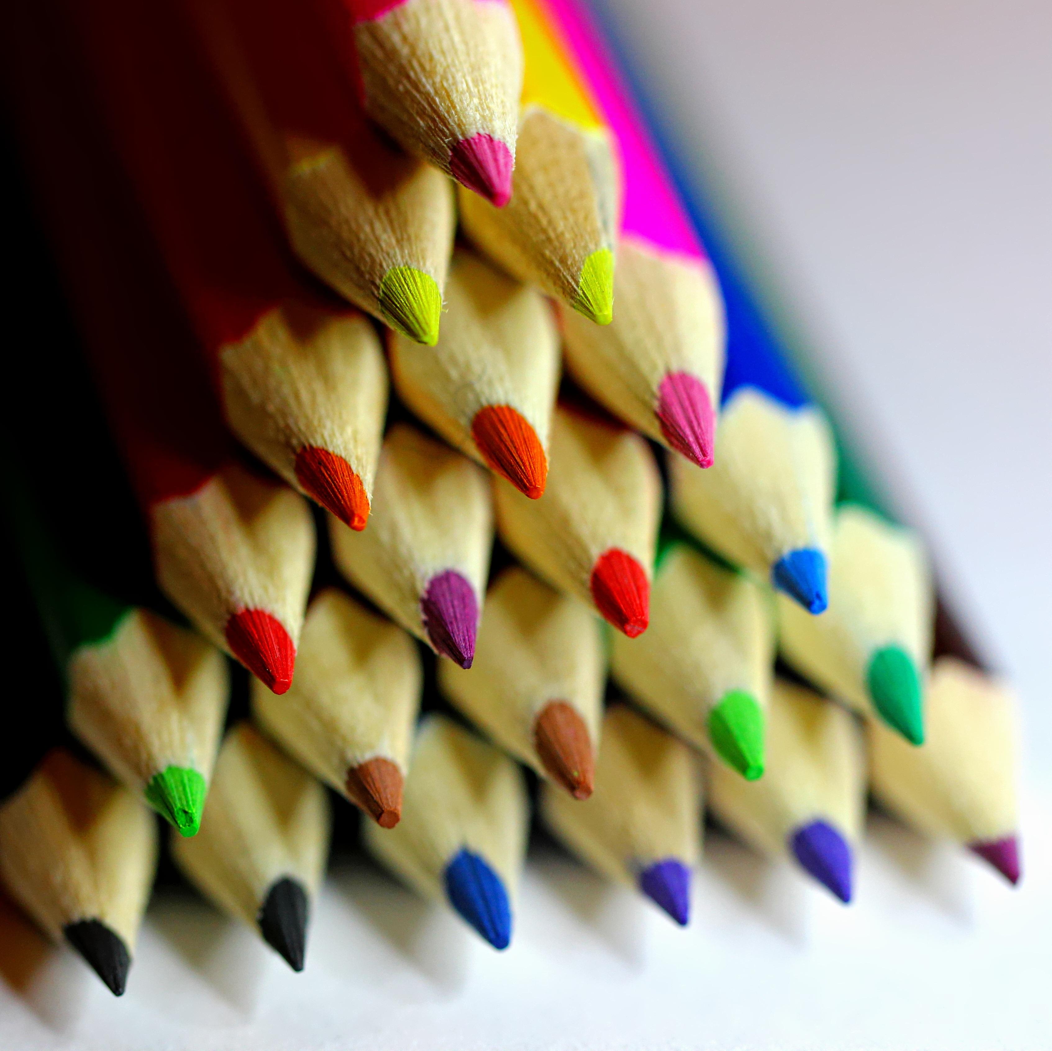 Fotos gratis : pétalo, rojo, azul, negro, rosado, infancia, pintura ...
