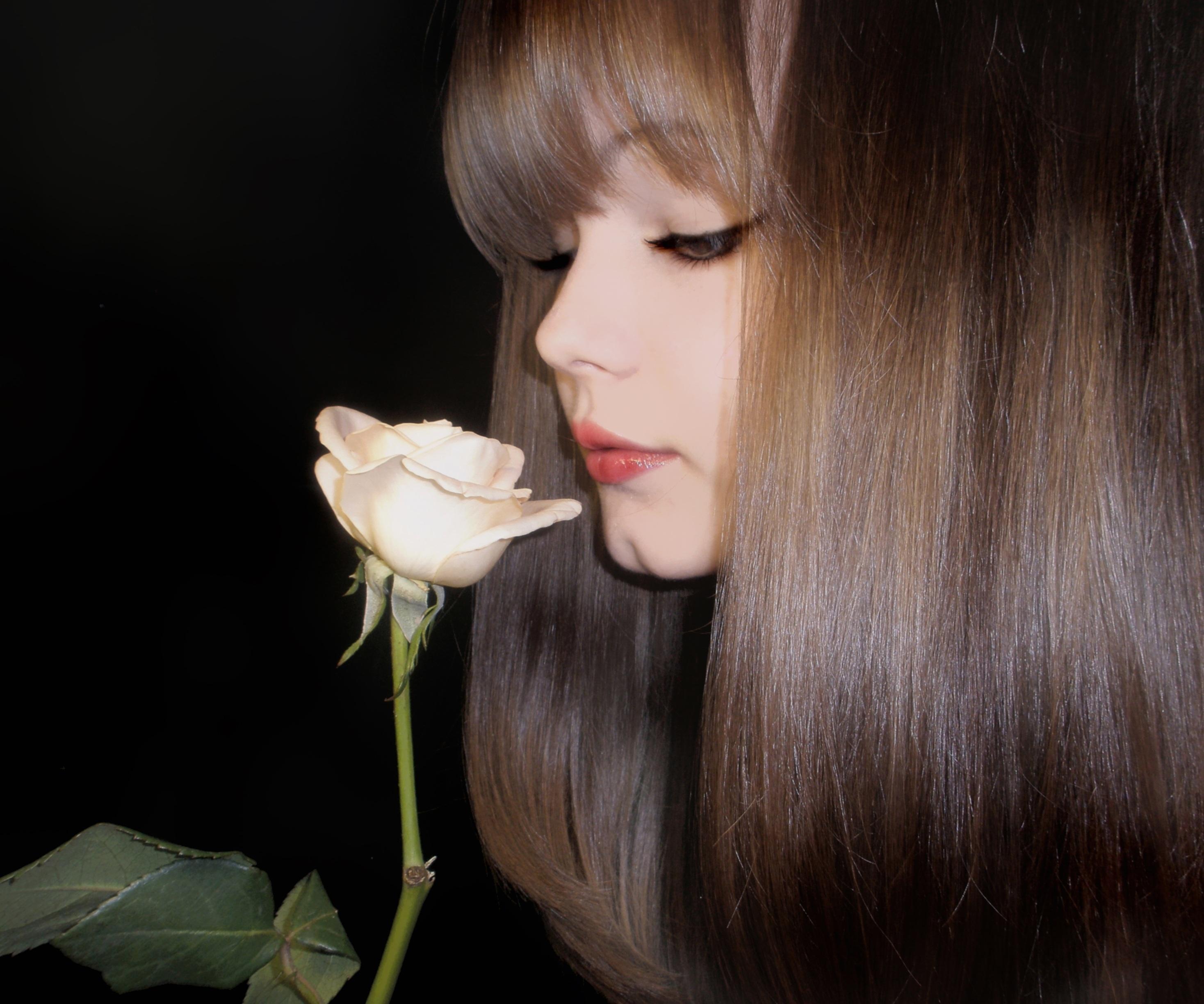 Images Gratuites La Personne Fille Femme Fleur Vue Rose