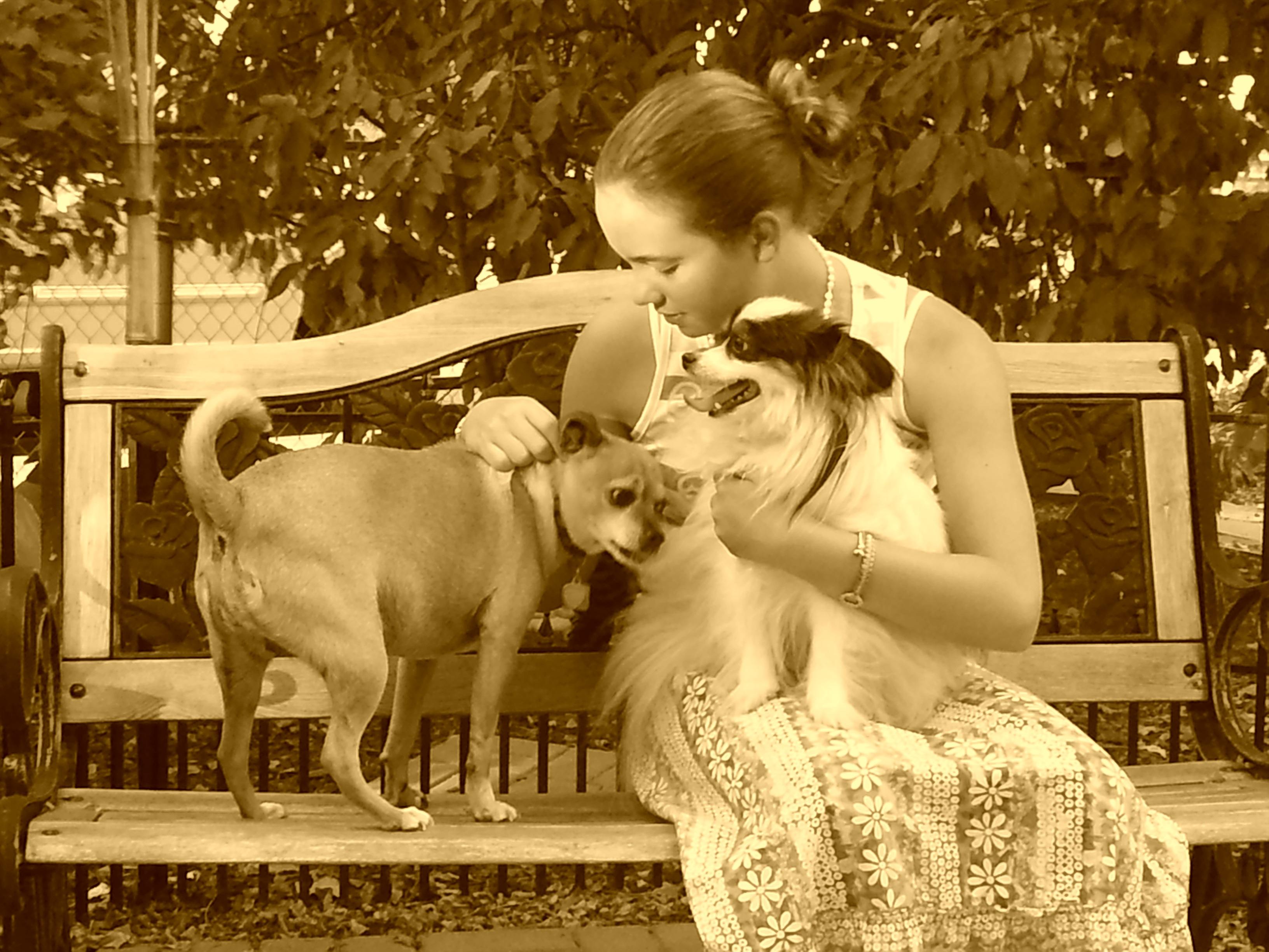 Kostenlose foto : Person, Menschen, Kind, Tier, Haustier, Porträt ...