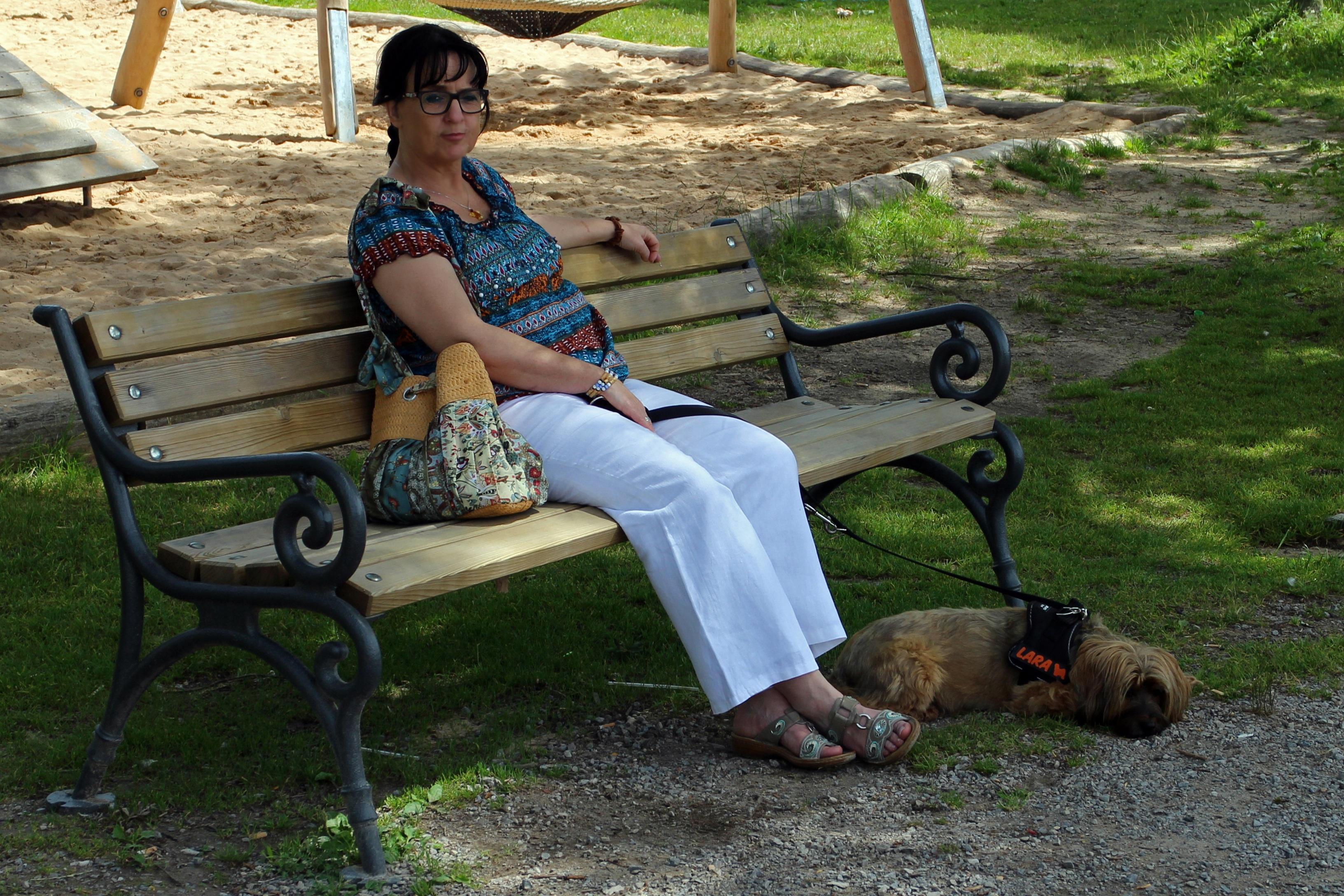 люди сидят на скамейке картинки тюльпанами период