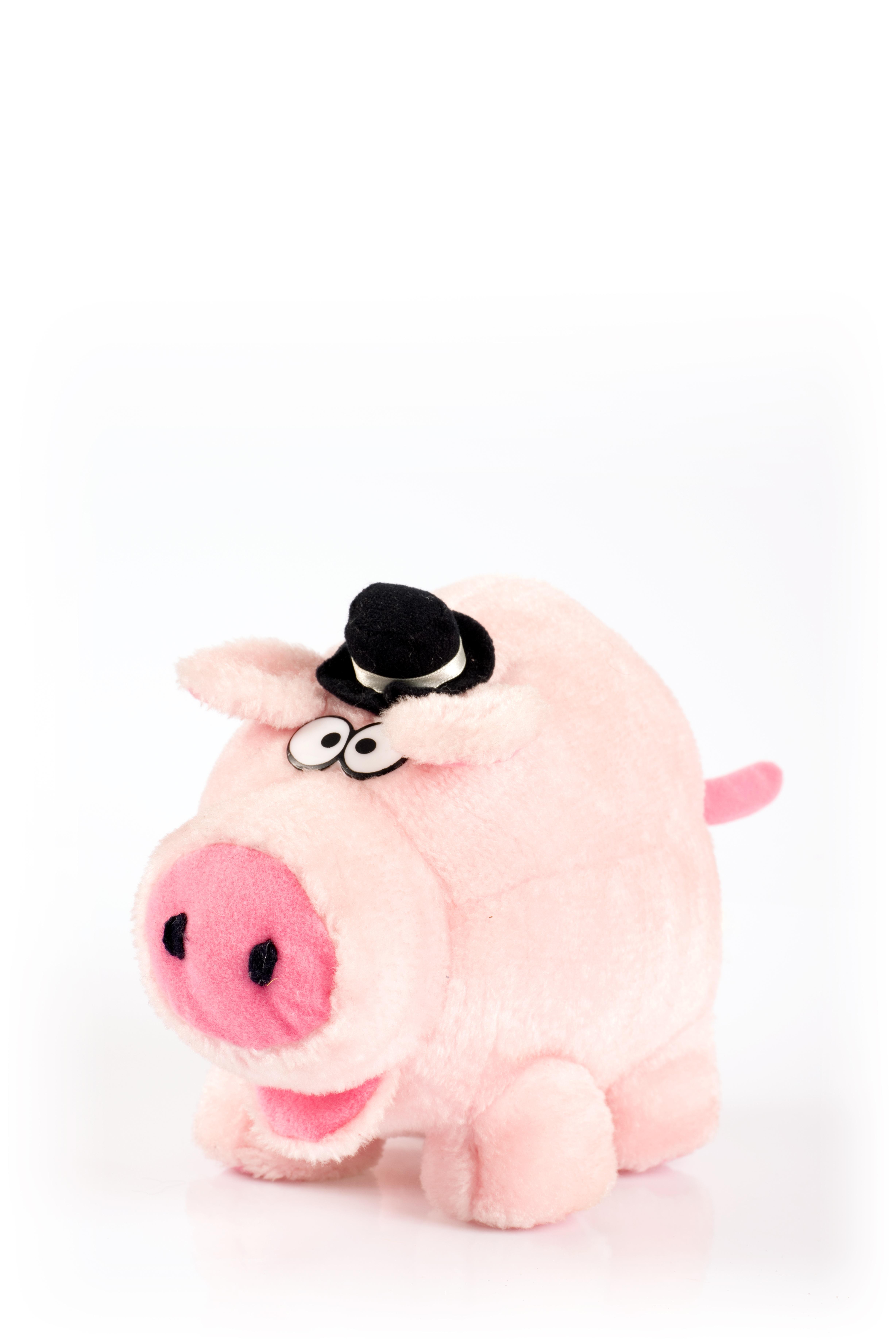 Fotos gratis : sombrero, rosado, juguete, material, producto, textil ...