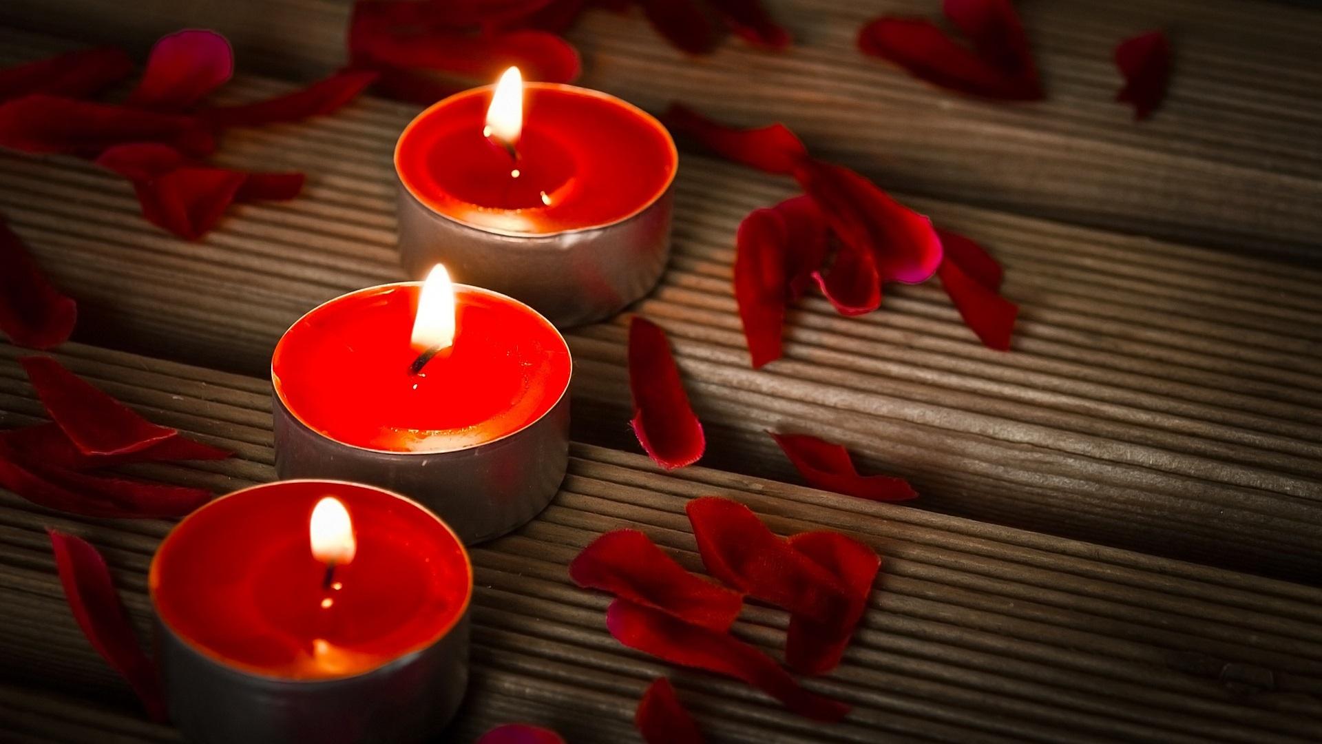 Free Images : petal, dark, floral, celebration, red, holiday