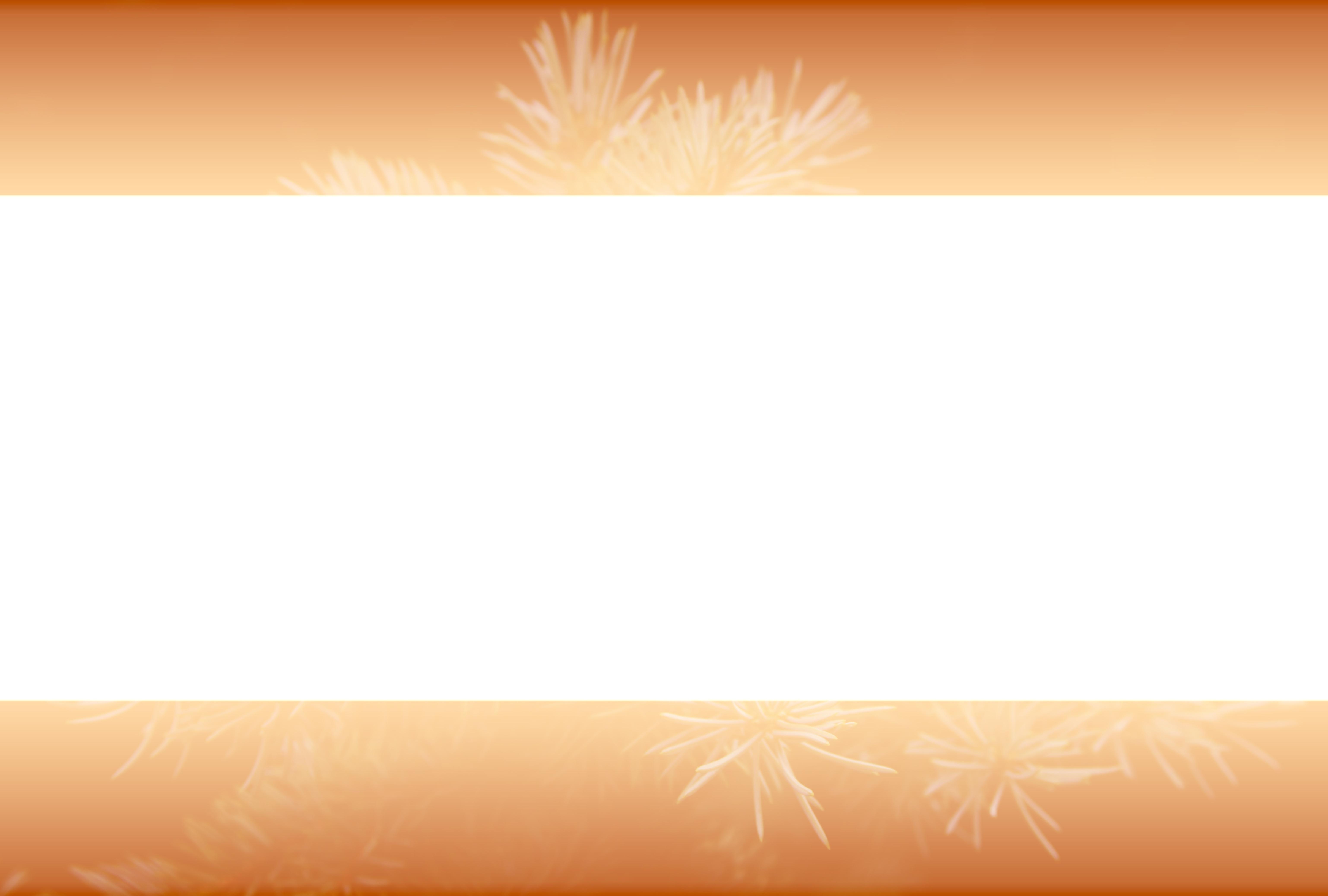 Kostenlose foto : Blütenblatt, Orange, Muster, Linie, Gelb ...