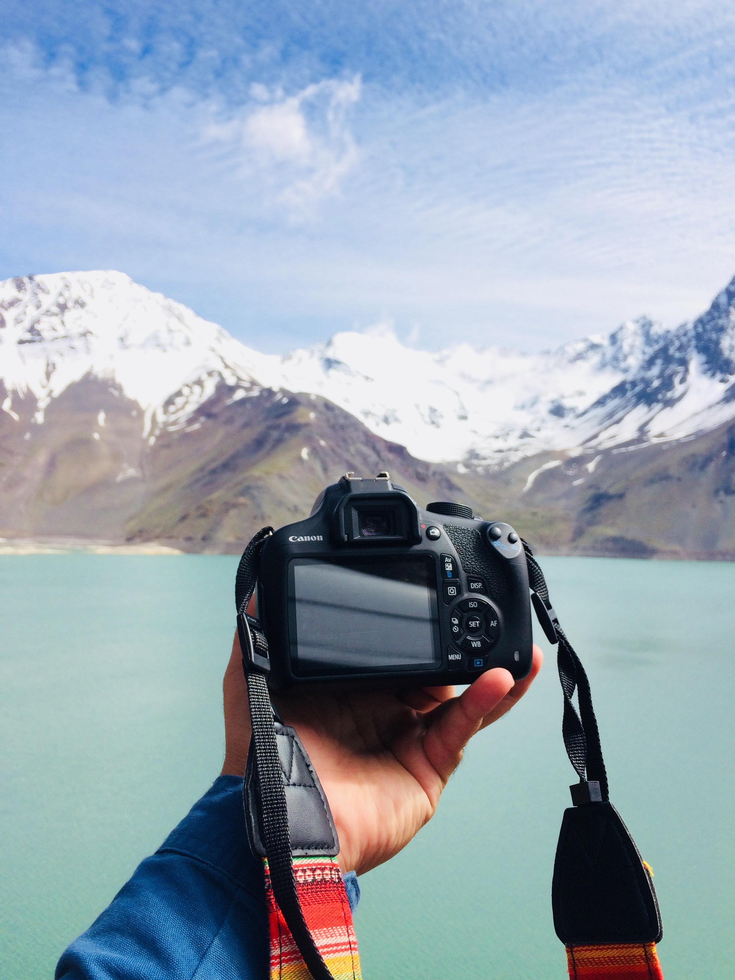 живота фотоаппарат для фотографирования неба изолированные тюльпаны белые