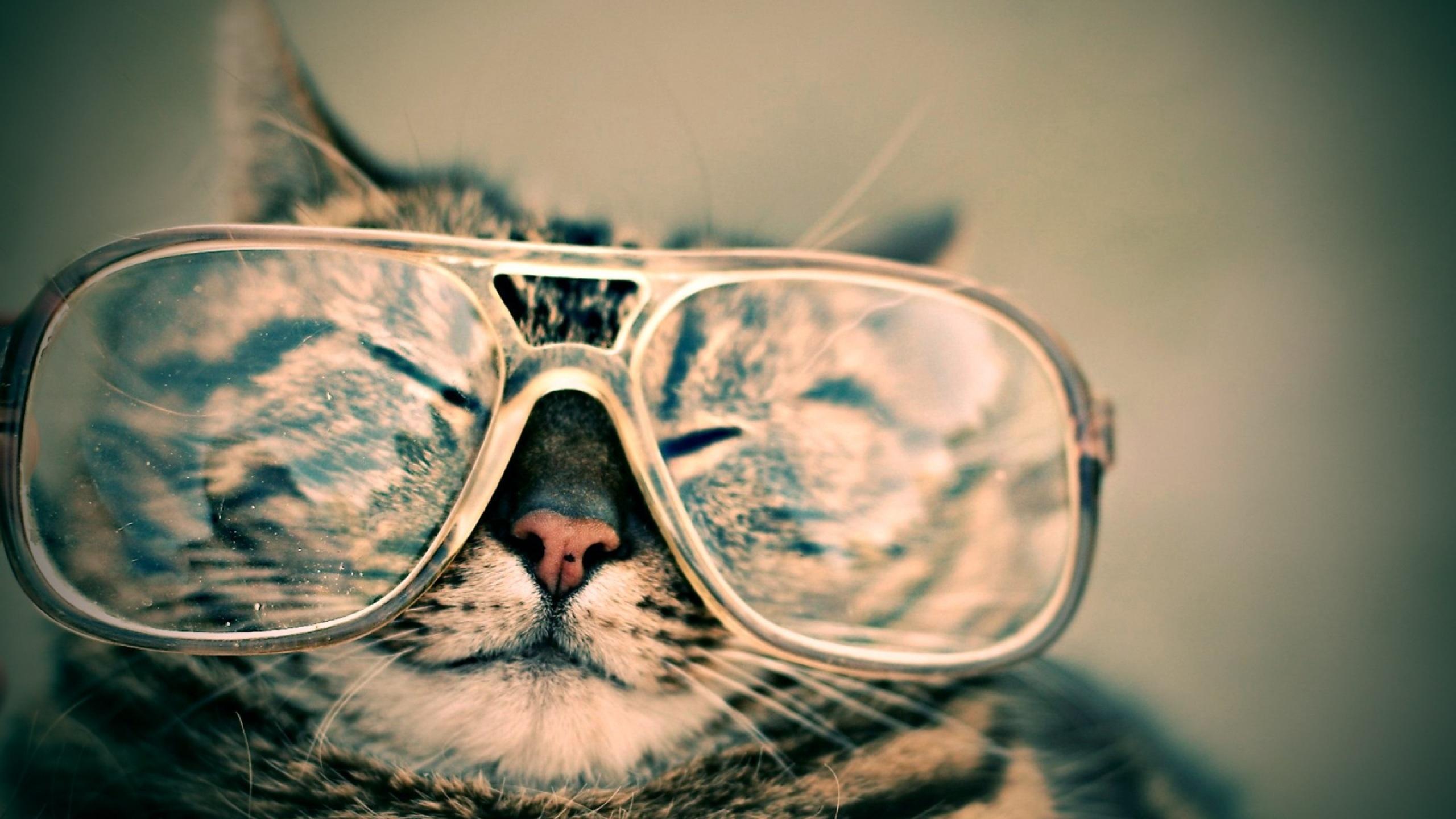 очки  № 1538021 без смс