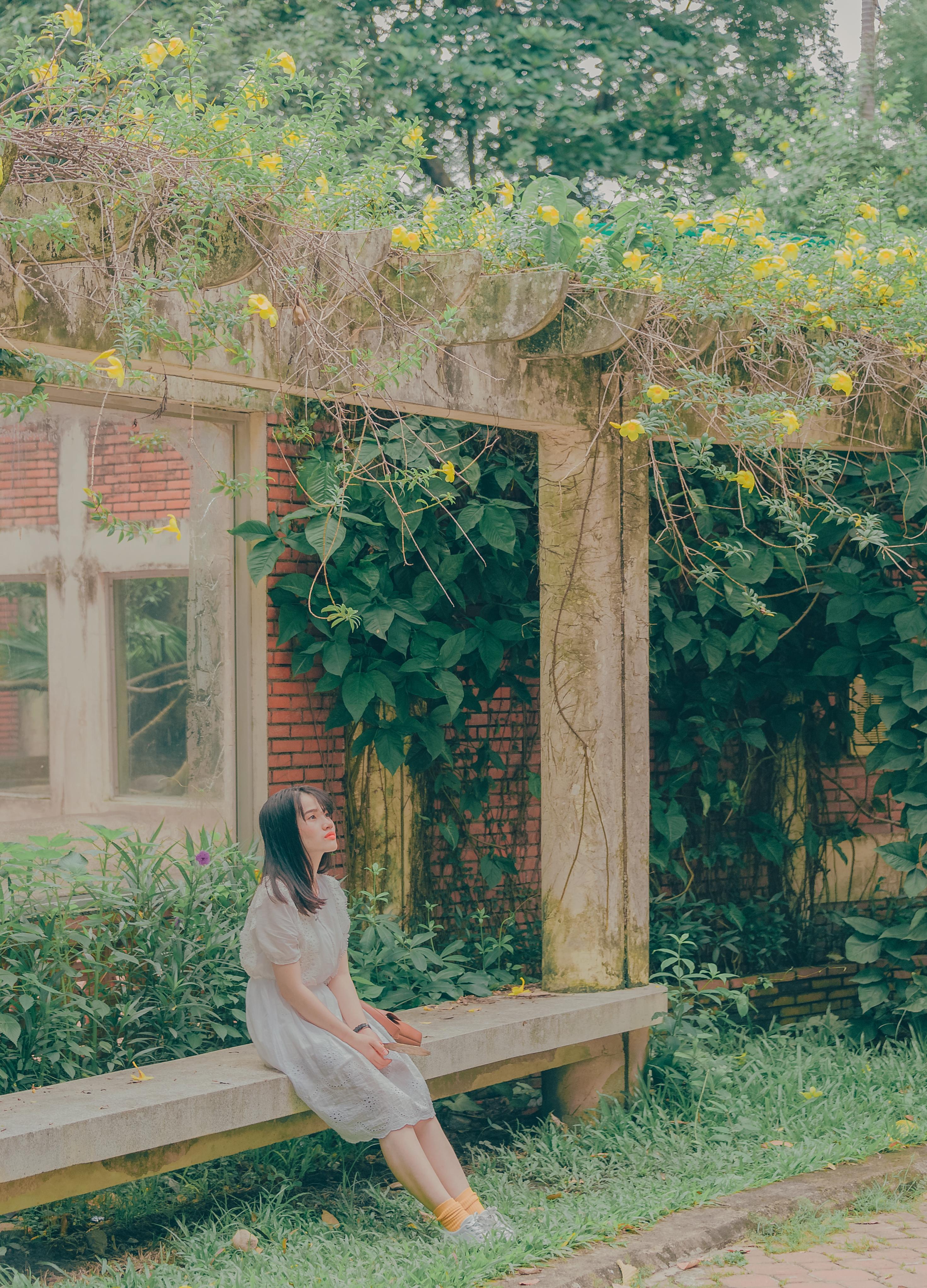 Free Images Photography Wallpaper Portrait Landscape Cute