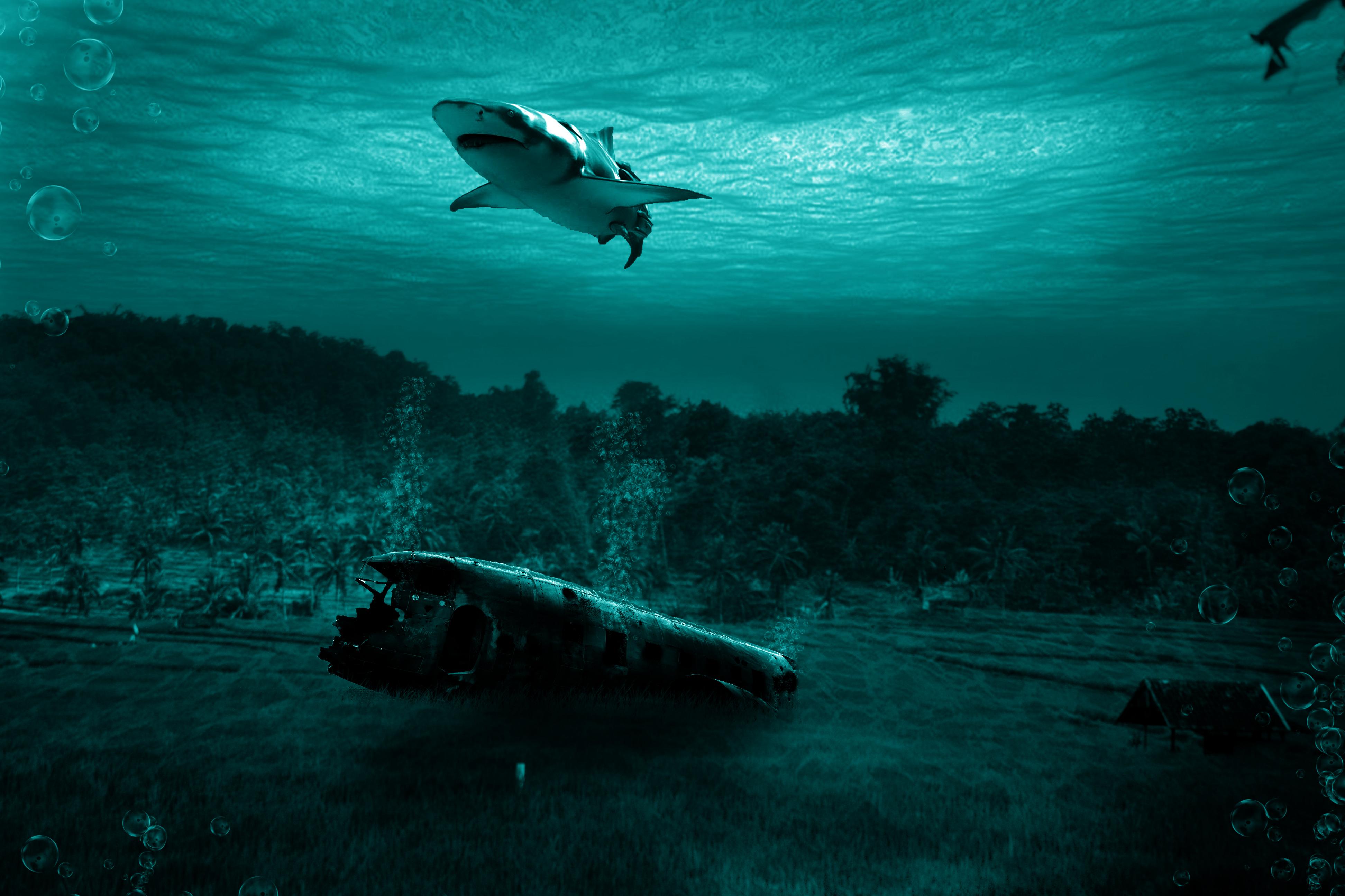 Images Gratuites Art De Photoshop Eau Sous Marin