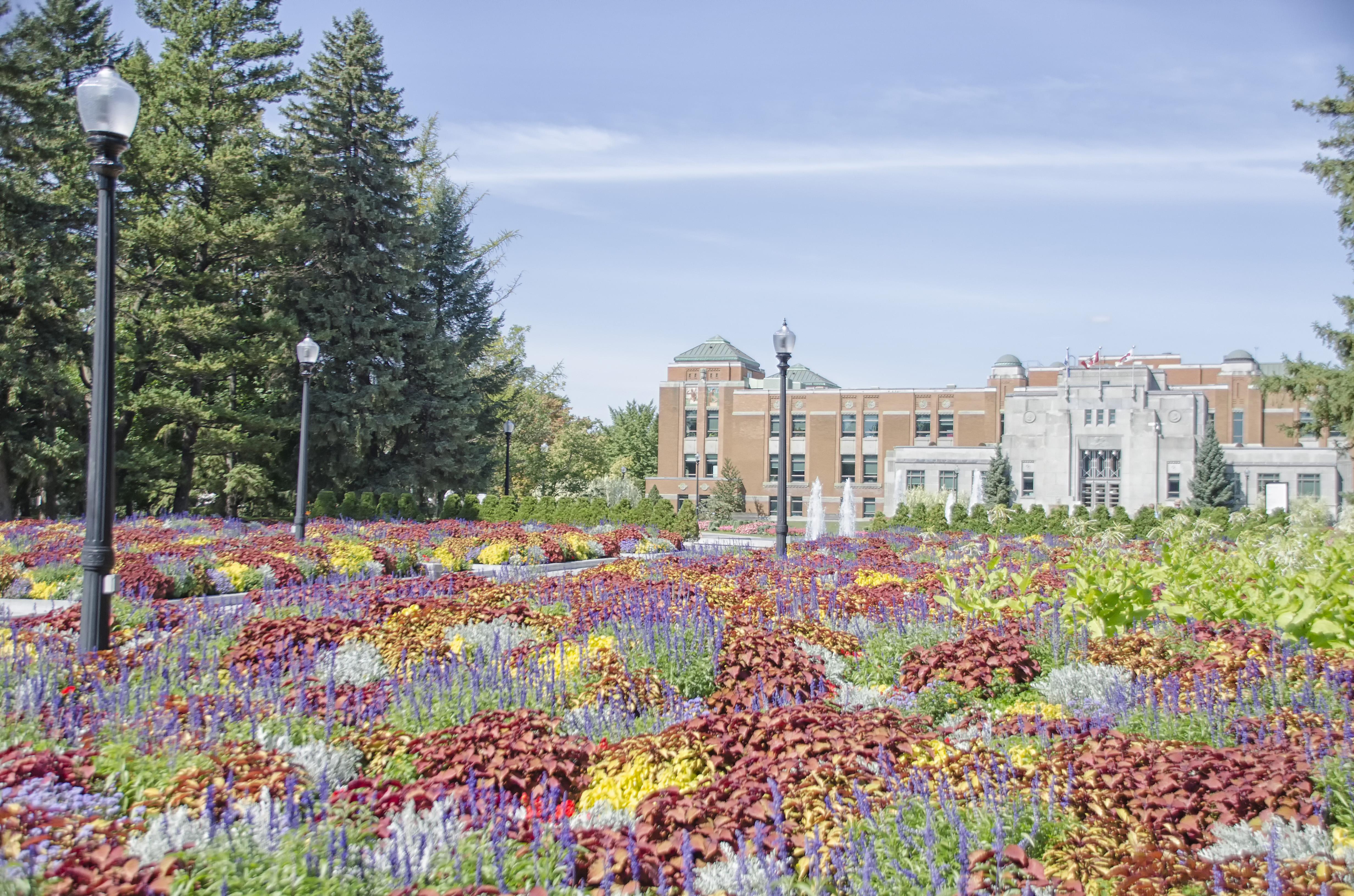 Images gratuites plante ferme pelouse prairie fleur ville l 39 automne jardin de de - Jardin ville de quebec perpignan ...