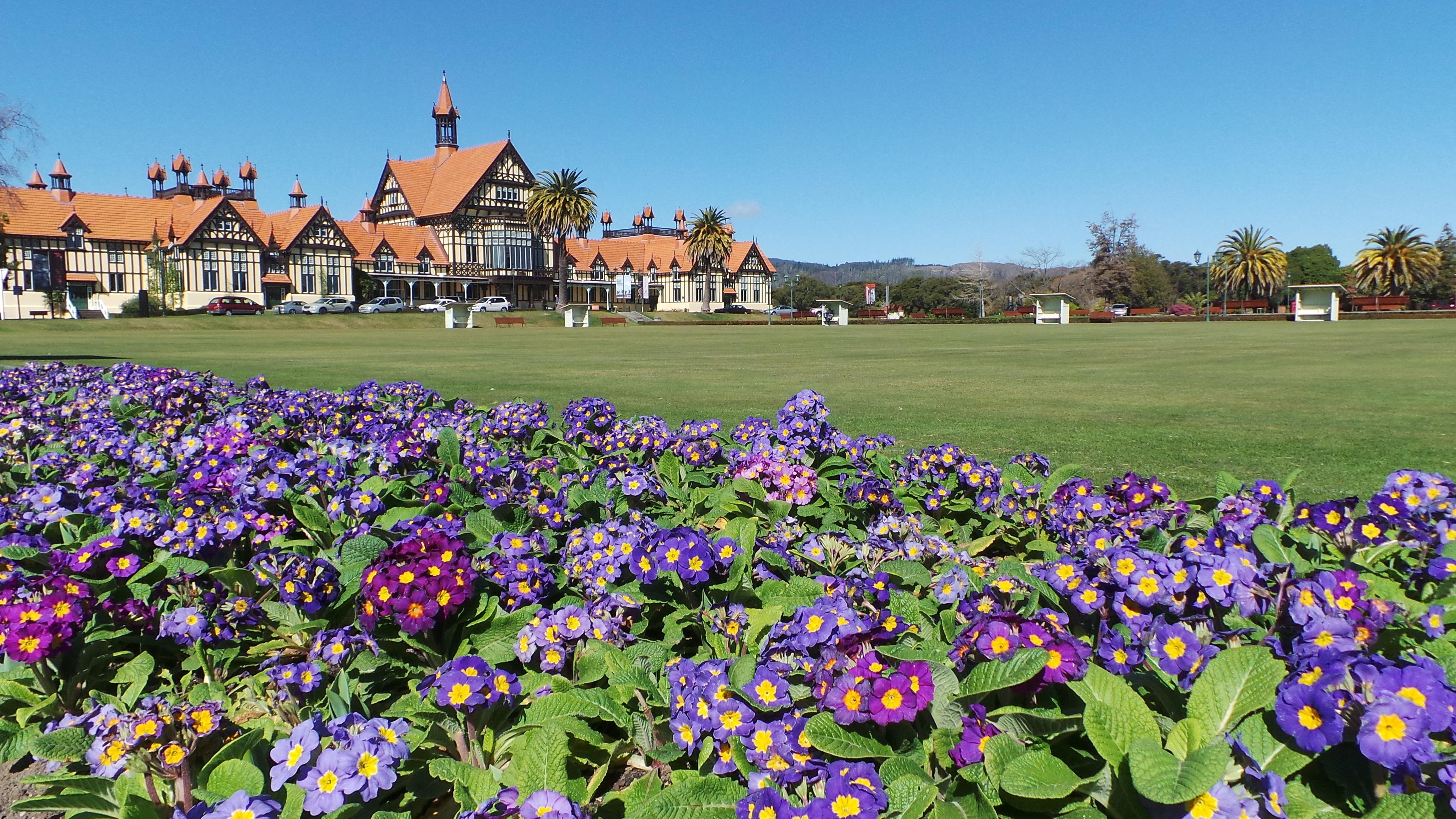 Free Images Field Lawn Meadow Flower Museum Park Garden