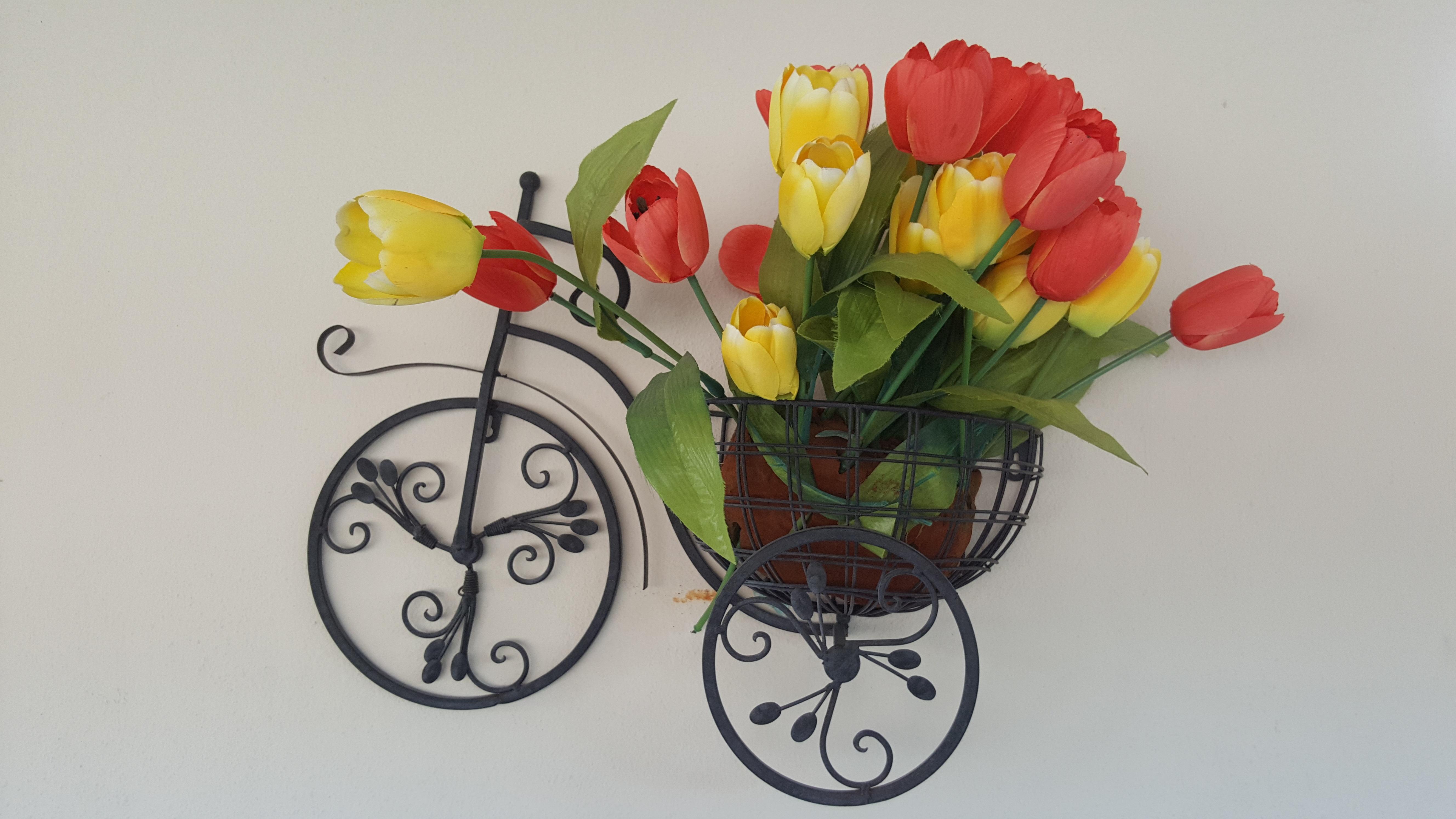 Images Gratuites Velo Mur Vase Decoration Printemps Jardin