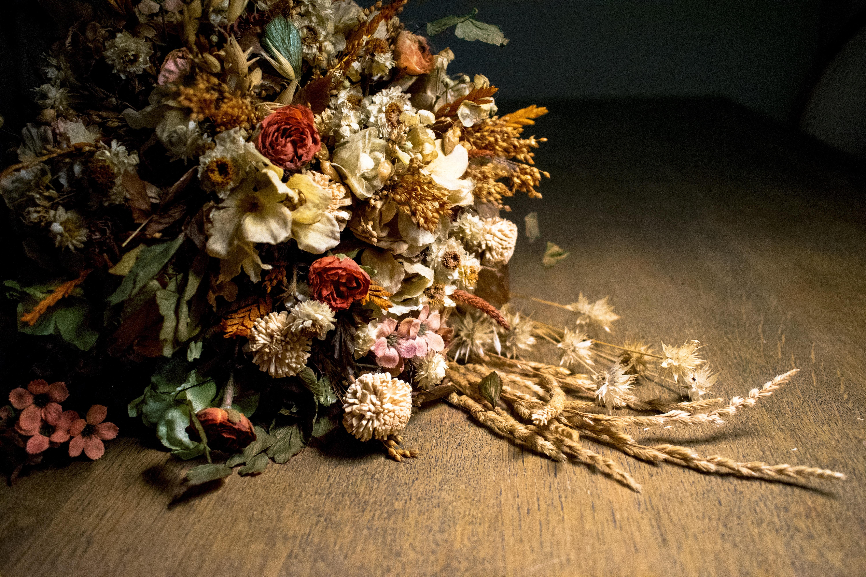Fotos Gratis Planta Flor Otono Flora Bodegon Pintura