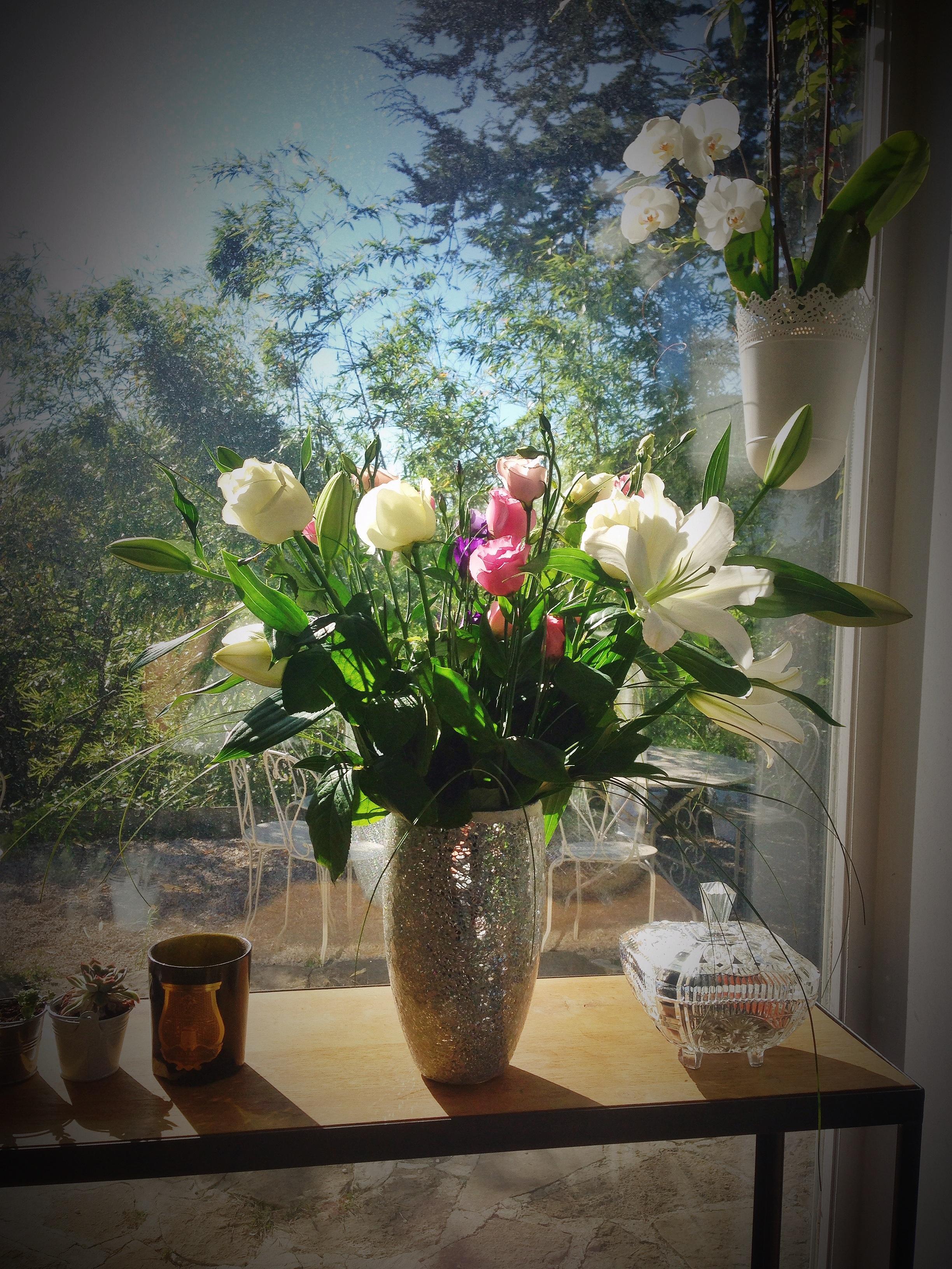 Fotoğraf çiçek Buket Vazo Pembe Bitki örtüsü Natürmort