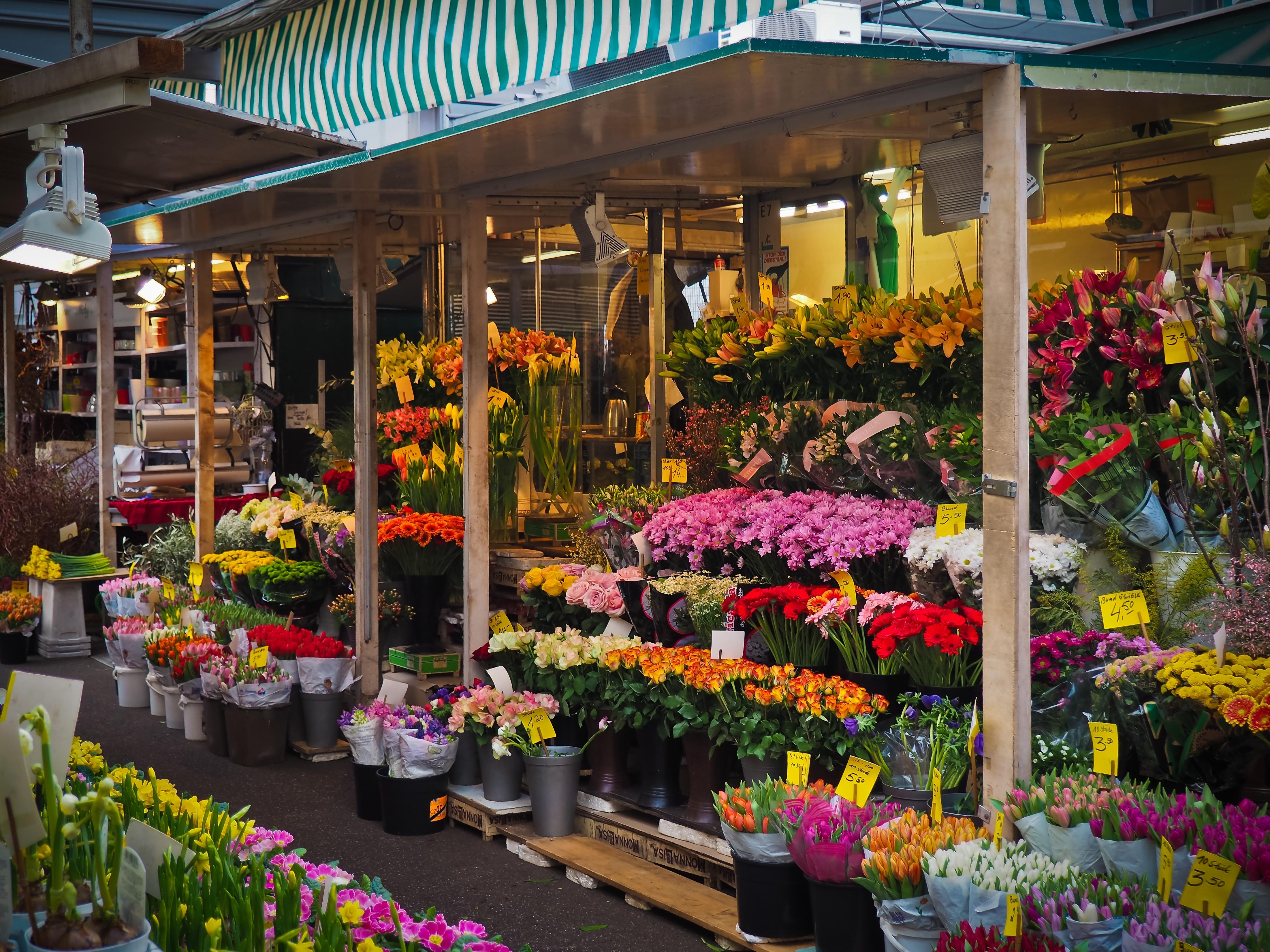 Assez Images Gratuites : plante, fleur, ville, vendeur, Marché, Coloré  AT16