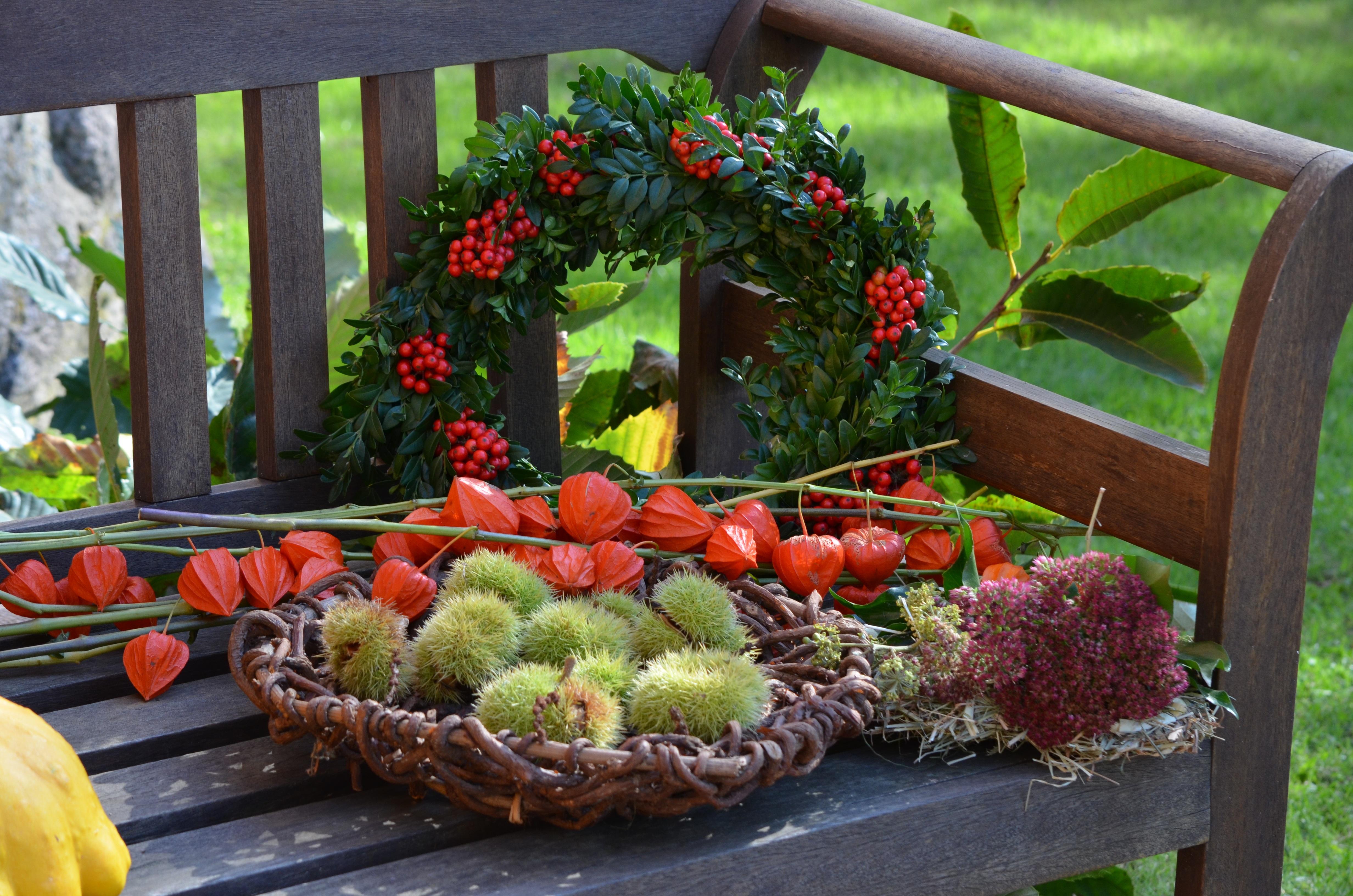Gratis afbeeldingen fabriek bloem eten produceren for Herfst decoratie