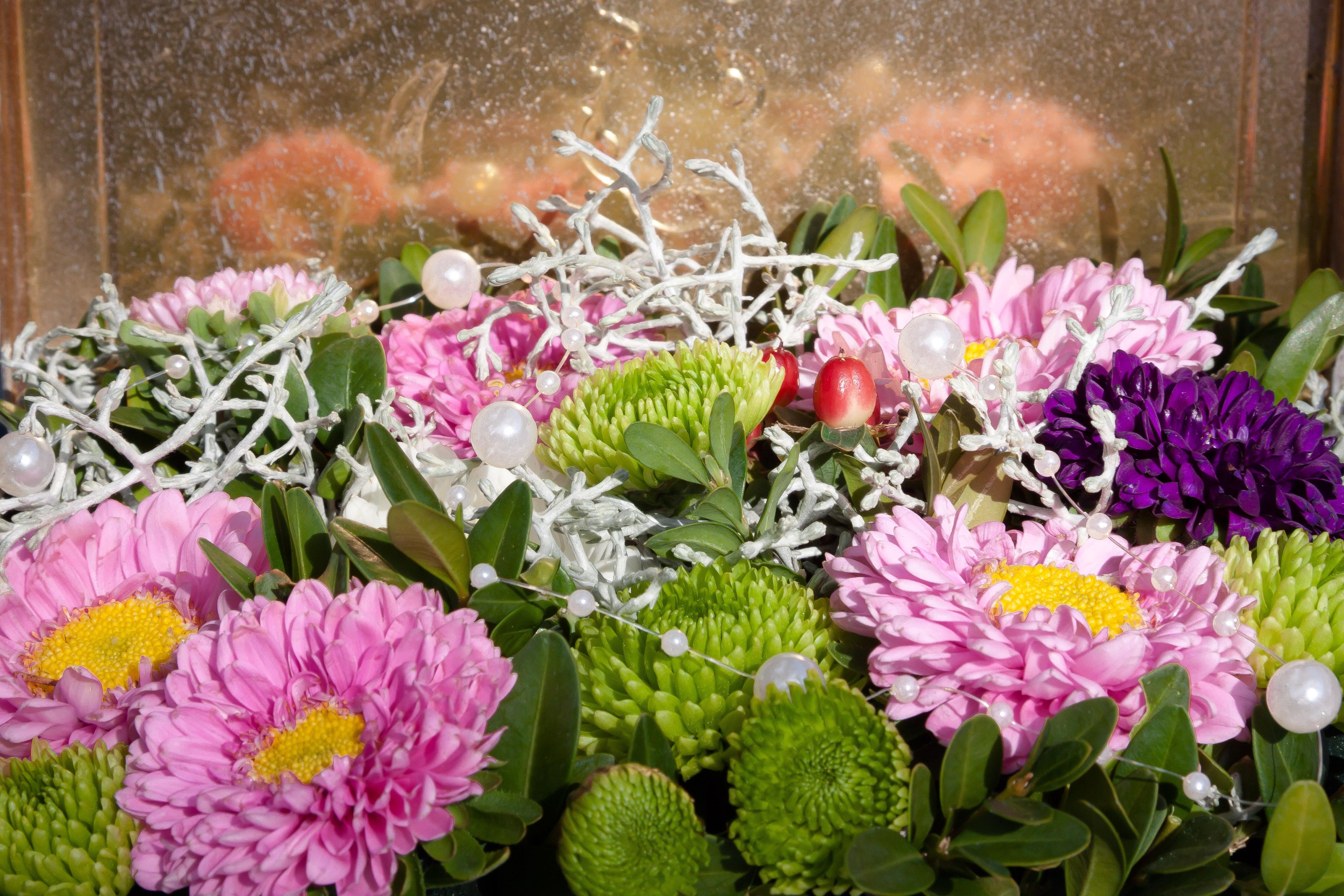 Free Images Green Pink Flora Arrangement Violet Floristry