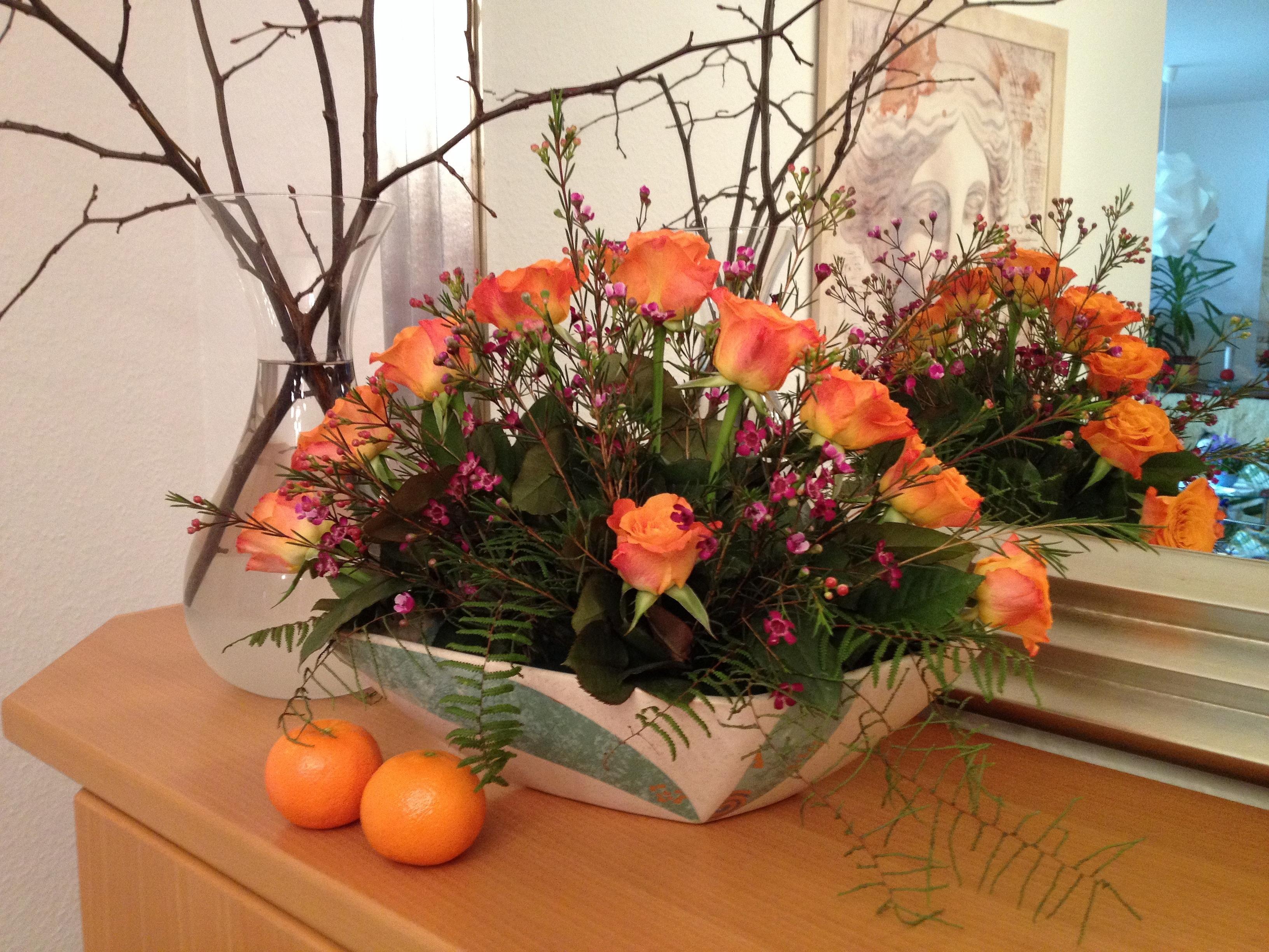Fotos Gratis Planta Flor Decoración Naranja Flora