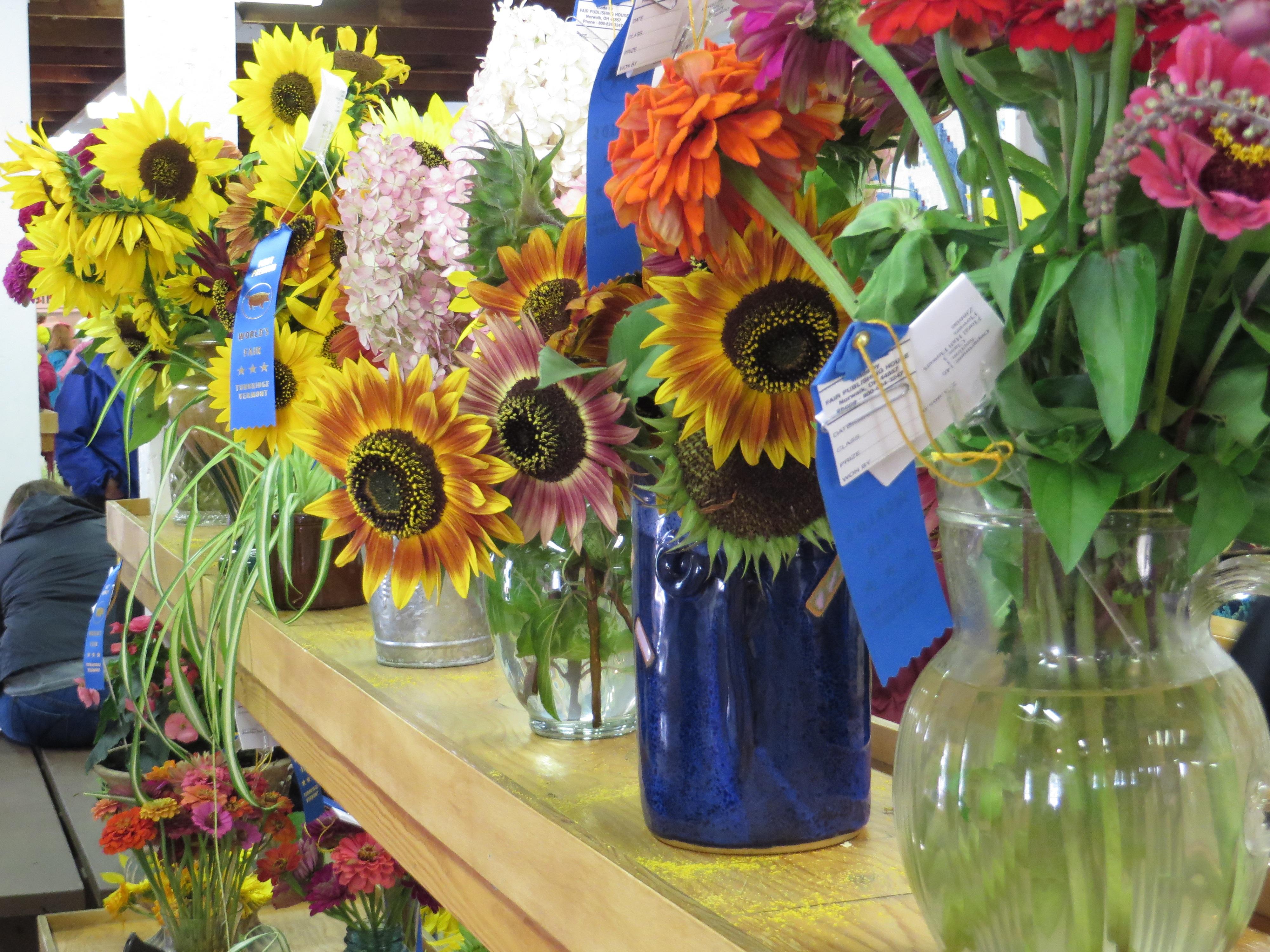 Fotos gratis flor flora flores competencia art - Jarrones de diseno ...