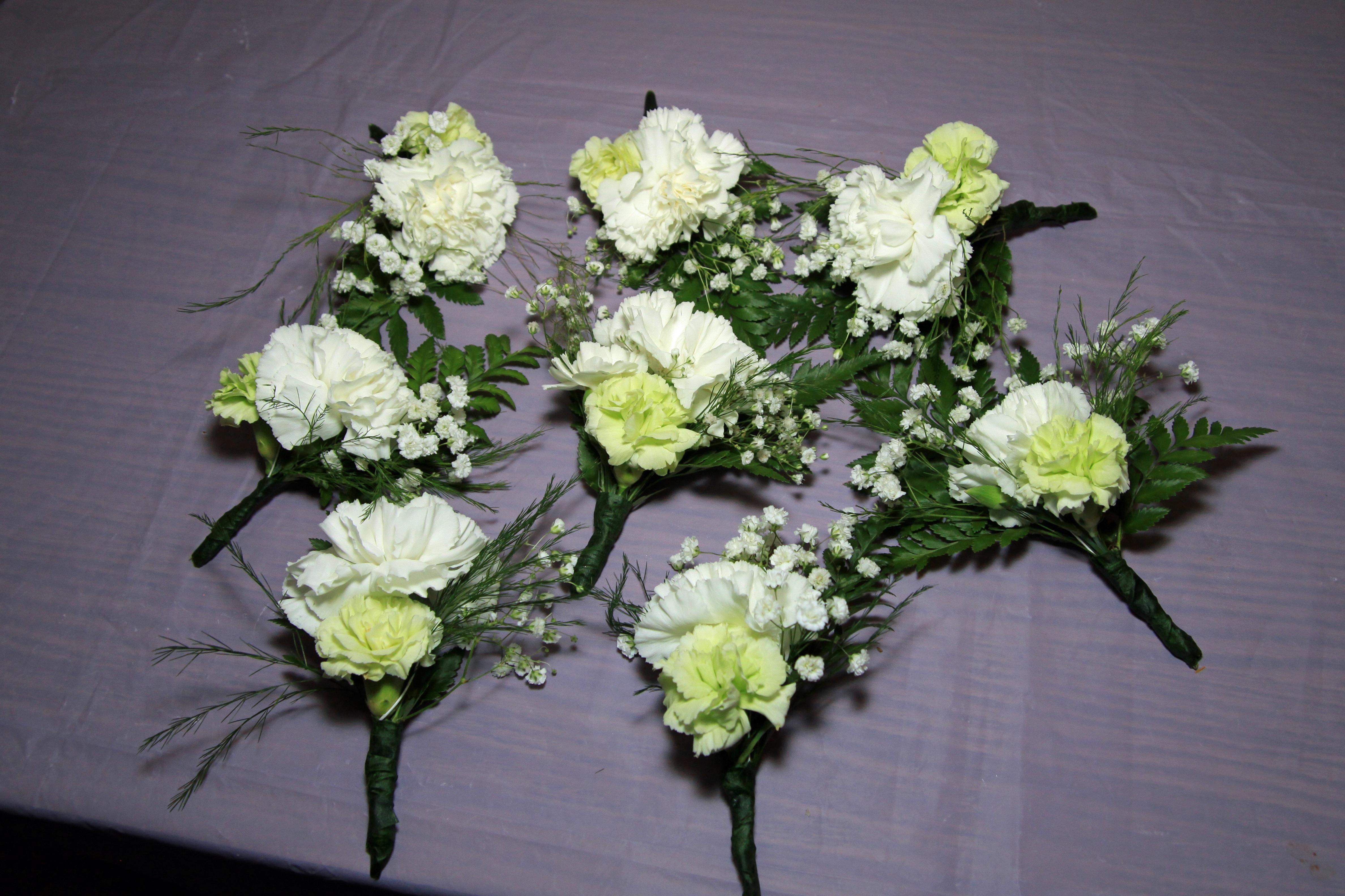 fleur anthurium