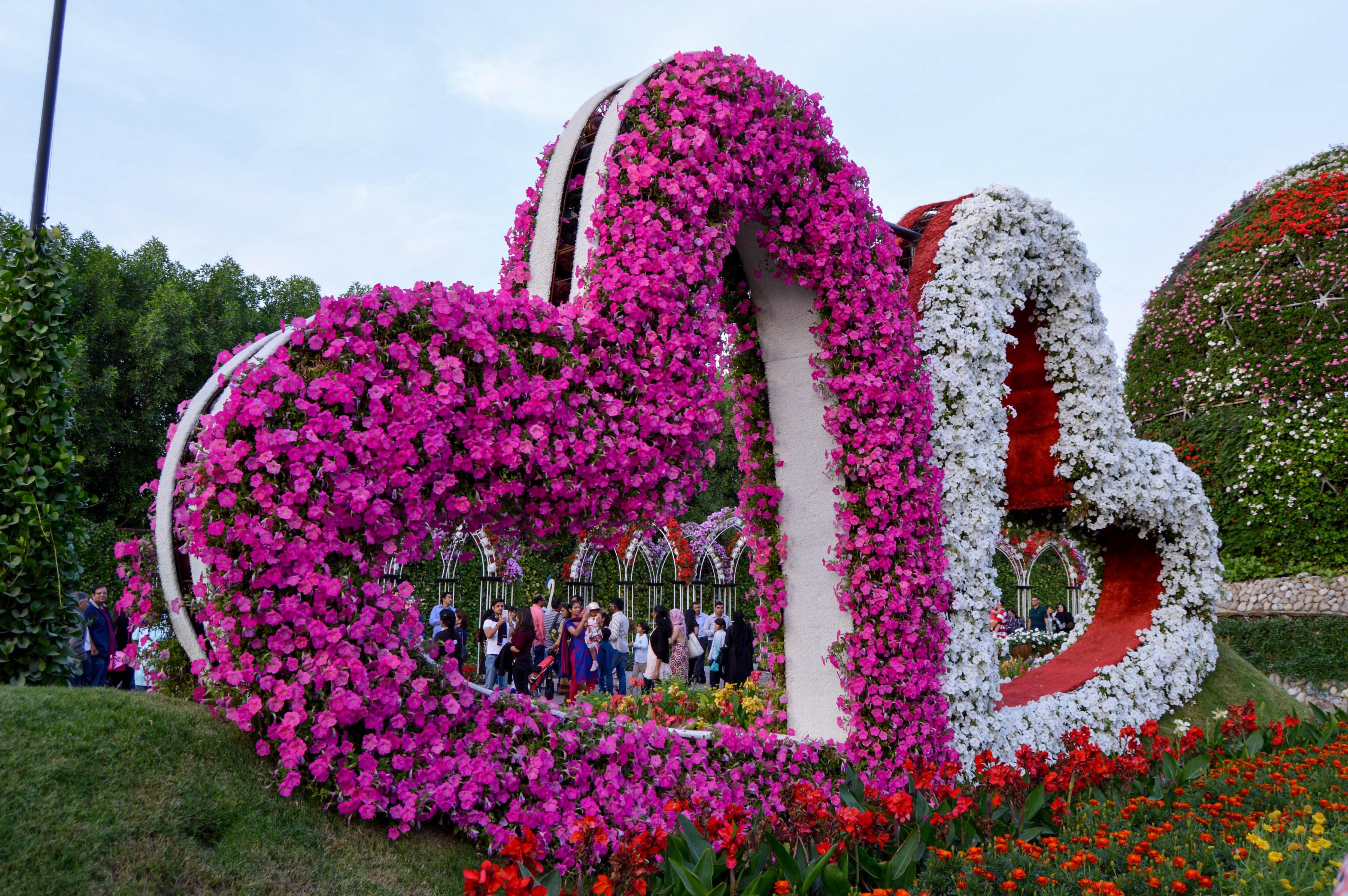 Fotos Gratis Planta Flor Floral Parque Jardín Temporada