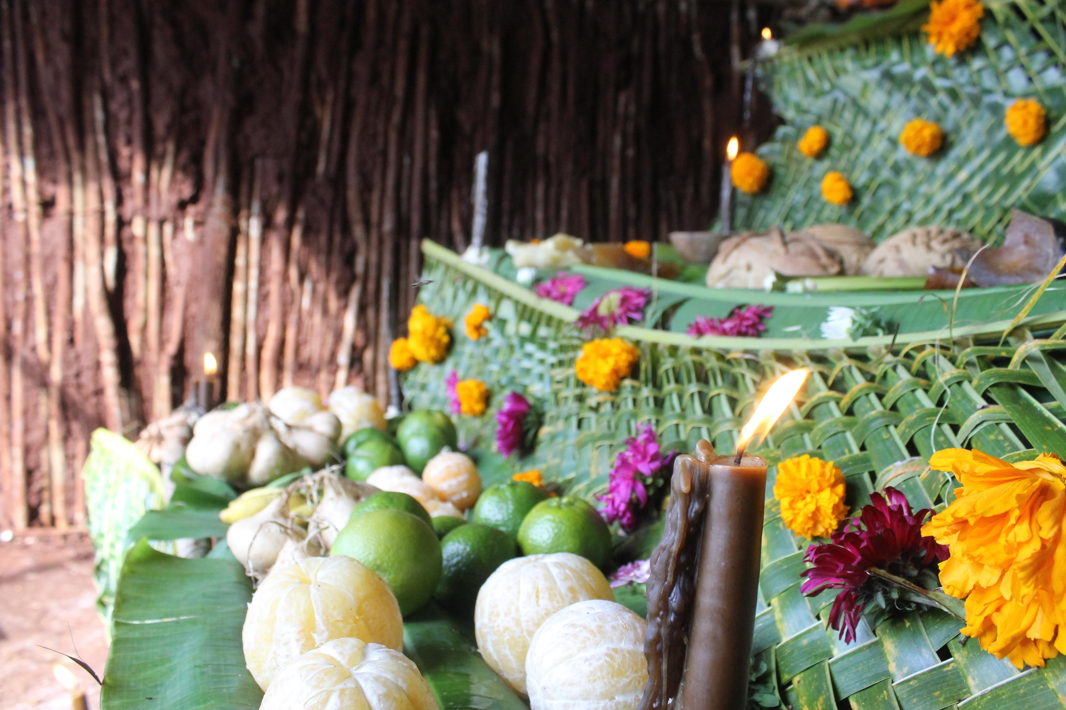 Kostenlose foto : Blume, Lebensmittel, produzieren, Gemüse, Herbst ...