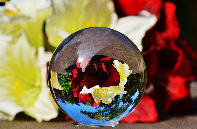 Цветы с глобусом, свадьбы букеты цветов