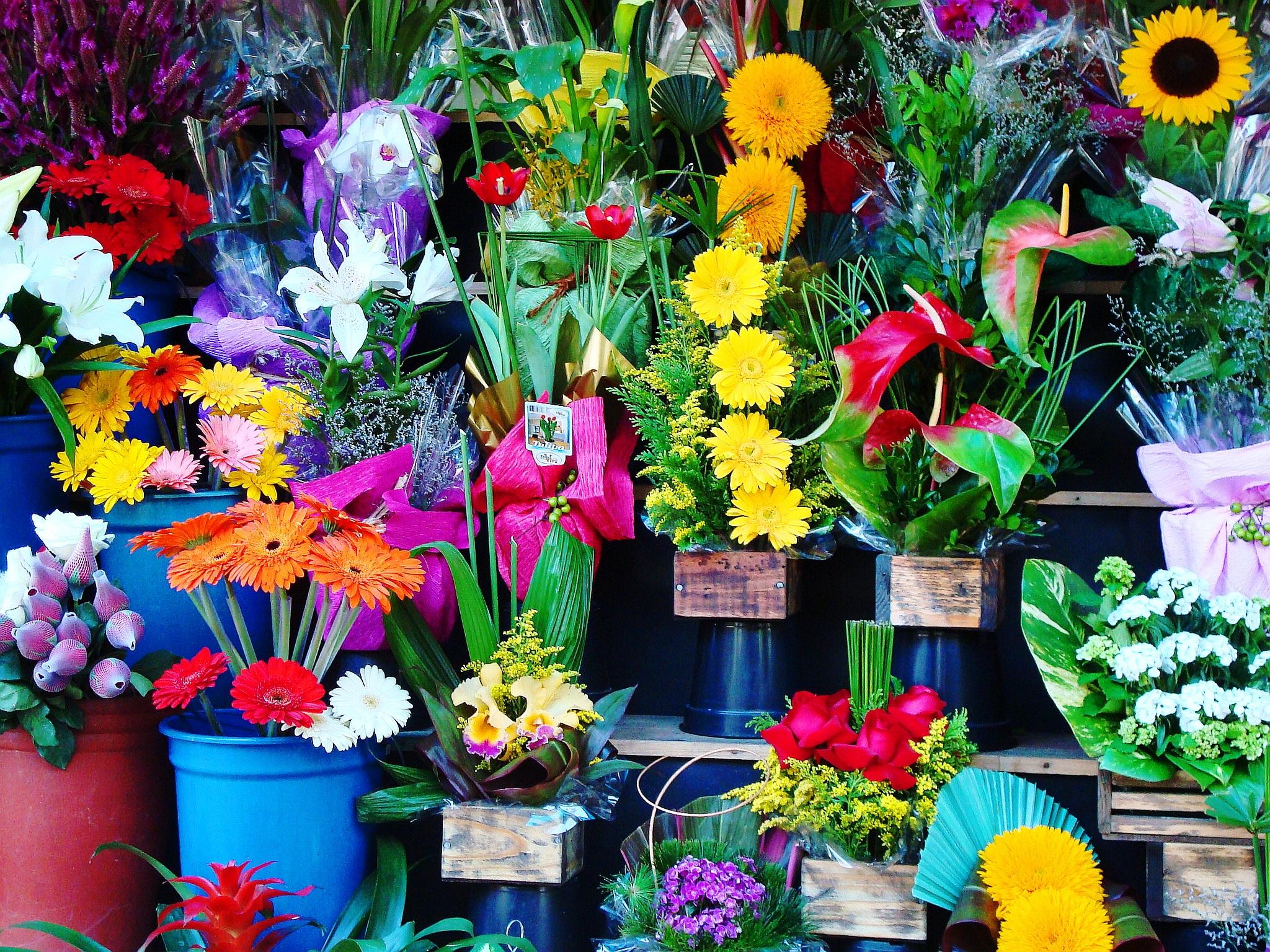 Невесты, какие есть цветы в магазине