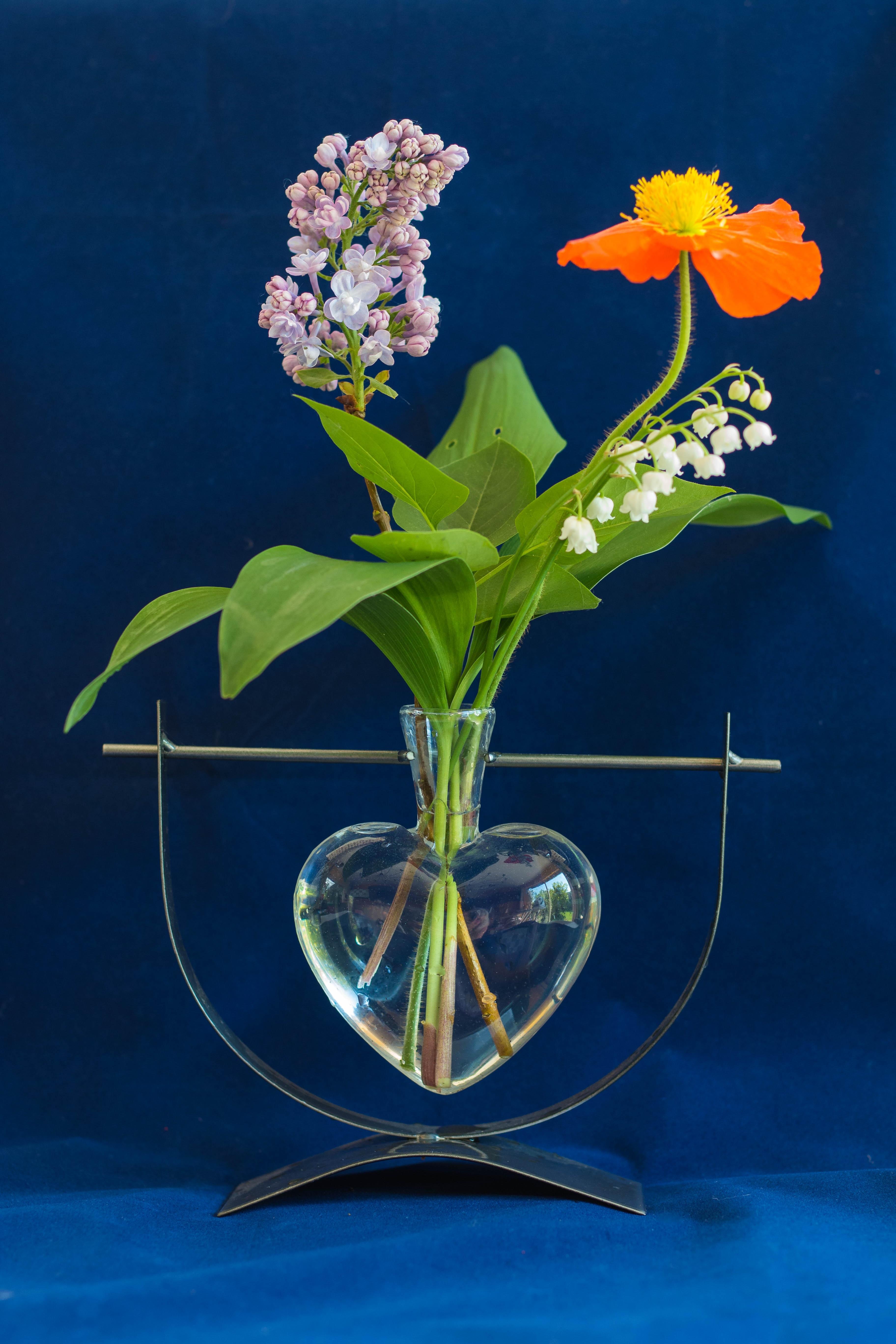 fleurs muguet