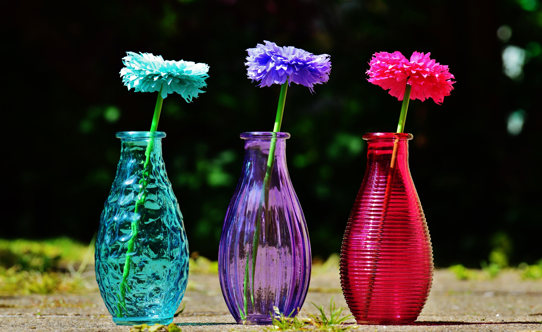 images gratuites plante fleur verre vase d coration. Black Bedroom Furniture Sets. Home Design Ideas