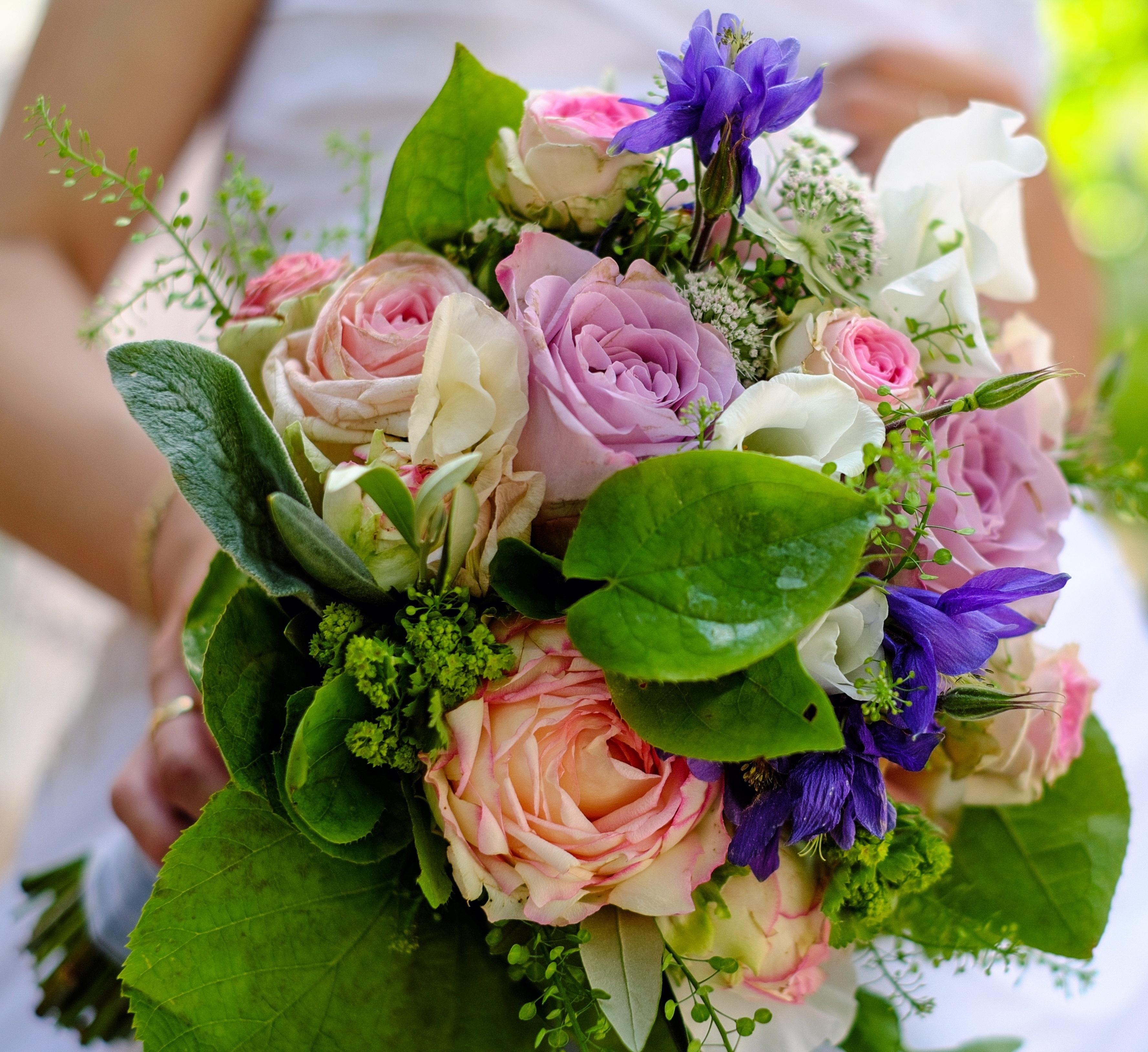 Kostenlose Foto Blume Liebe Strauss Bunt Rosa Hochzeit