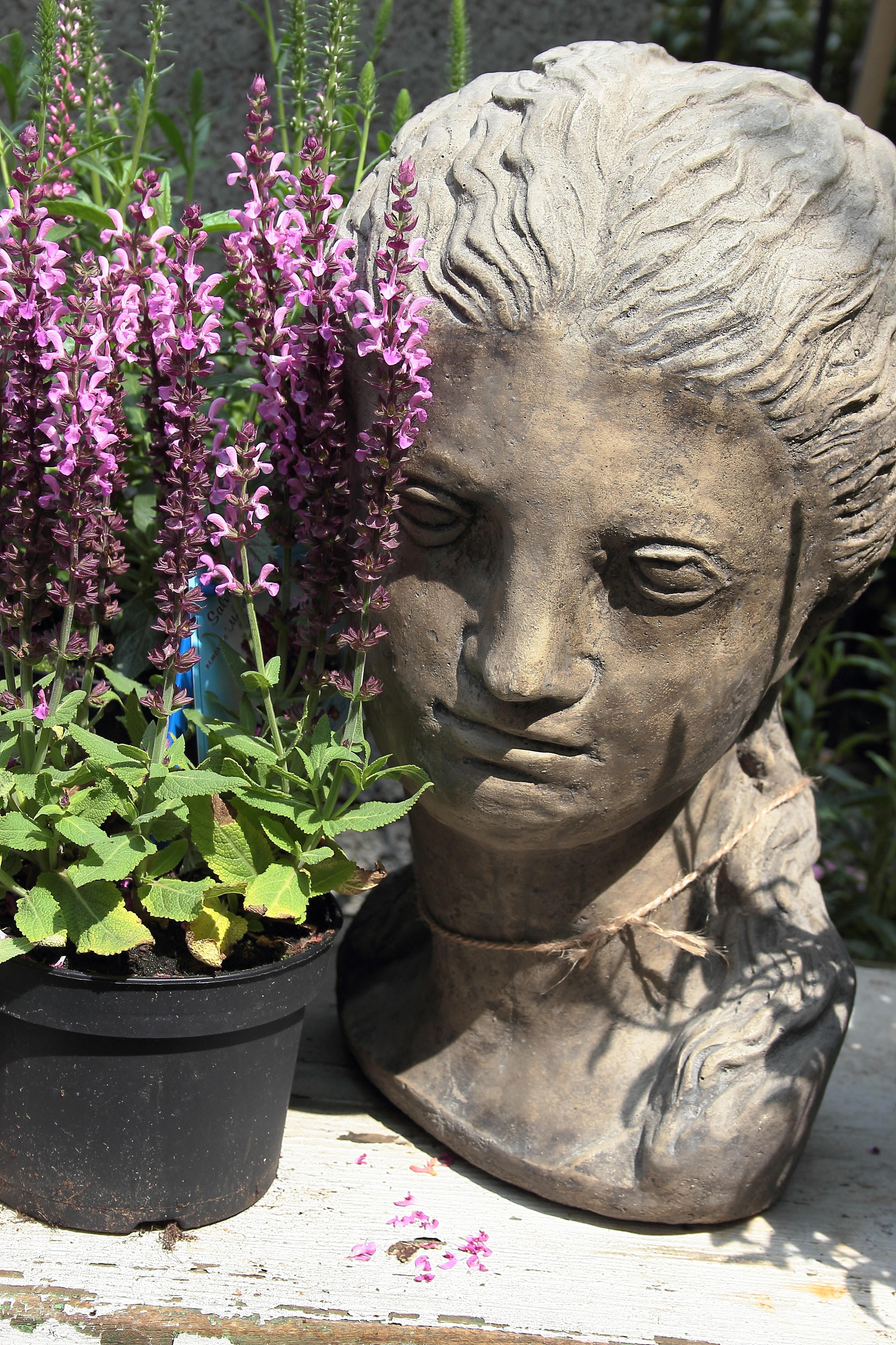 Kostenlose Foto Pflanze Blume Monument Statue Botanik Garten