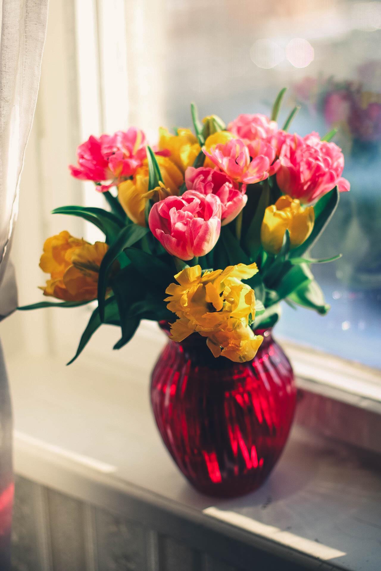 Vaso Fiori.Immagini Belle Fiore Petalo Fioritura Mazzo Vaso