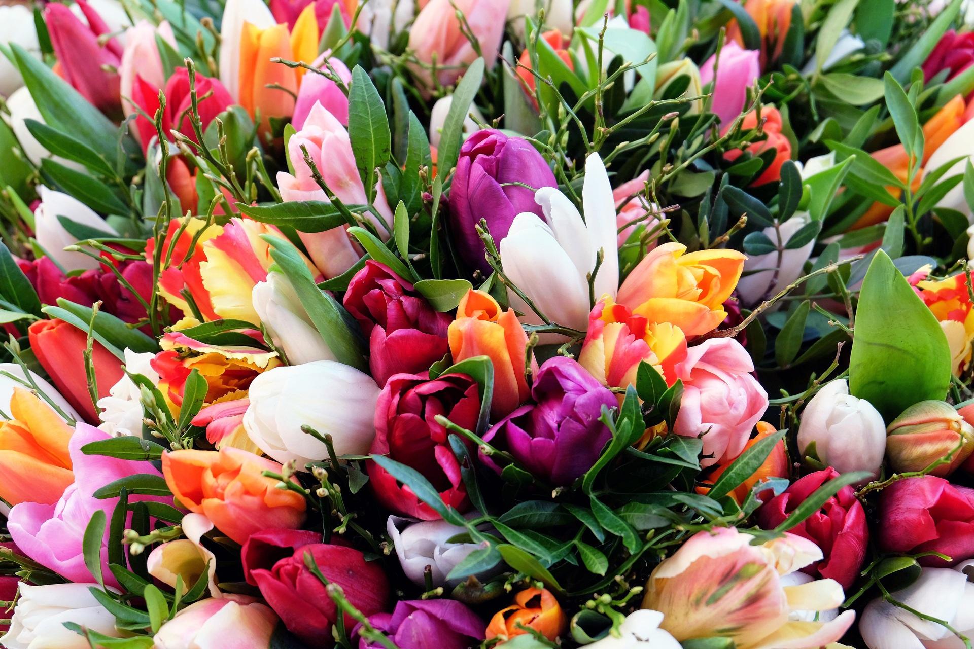 Картинки цветы красивые букеты весенние